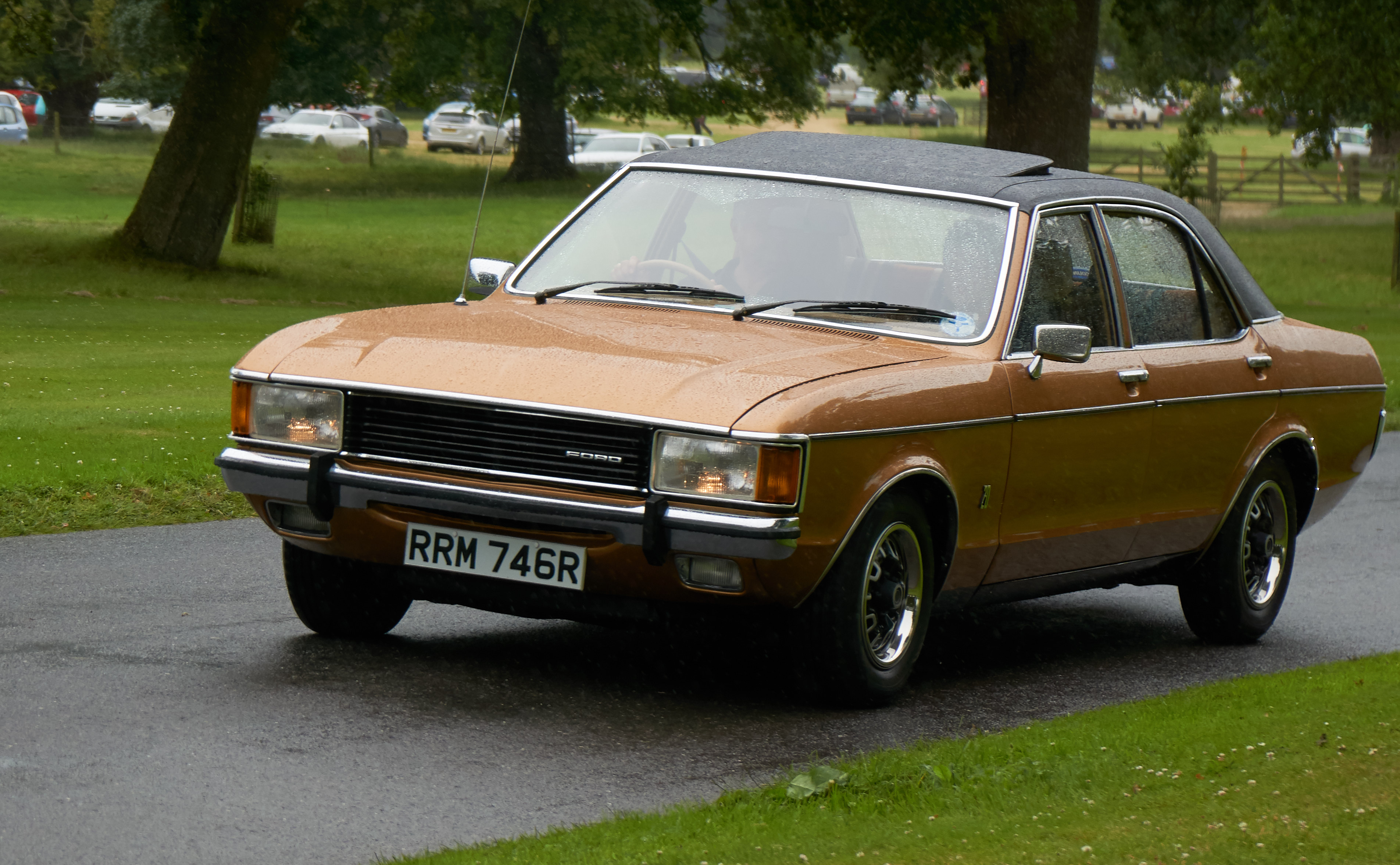 1977 Ford Granada, Car, Grass, Road, Tree, HQ Photo