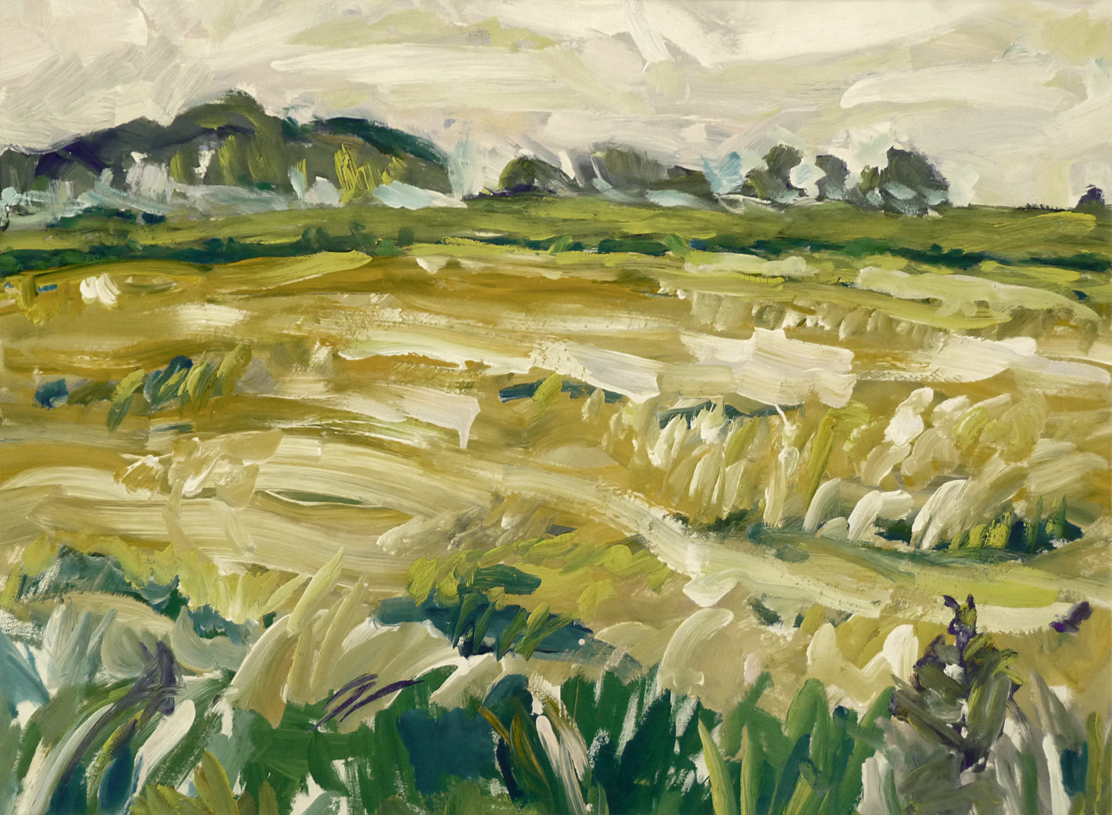 1985 - 'Ripe cornfield near Bourtanghe' Netherlands, landscape painting on paper in gouache; Dutch Expressionism art / Hollands expressionisme; A high resolution image free download to print, public domain / Commons, CC-BY, Heijnsbroek, 20th, Image, Te_koop, Summer, HQ Photo