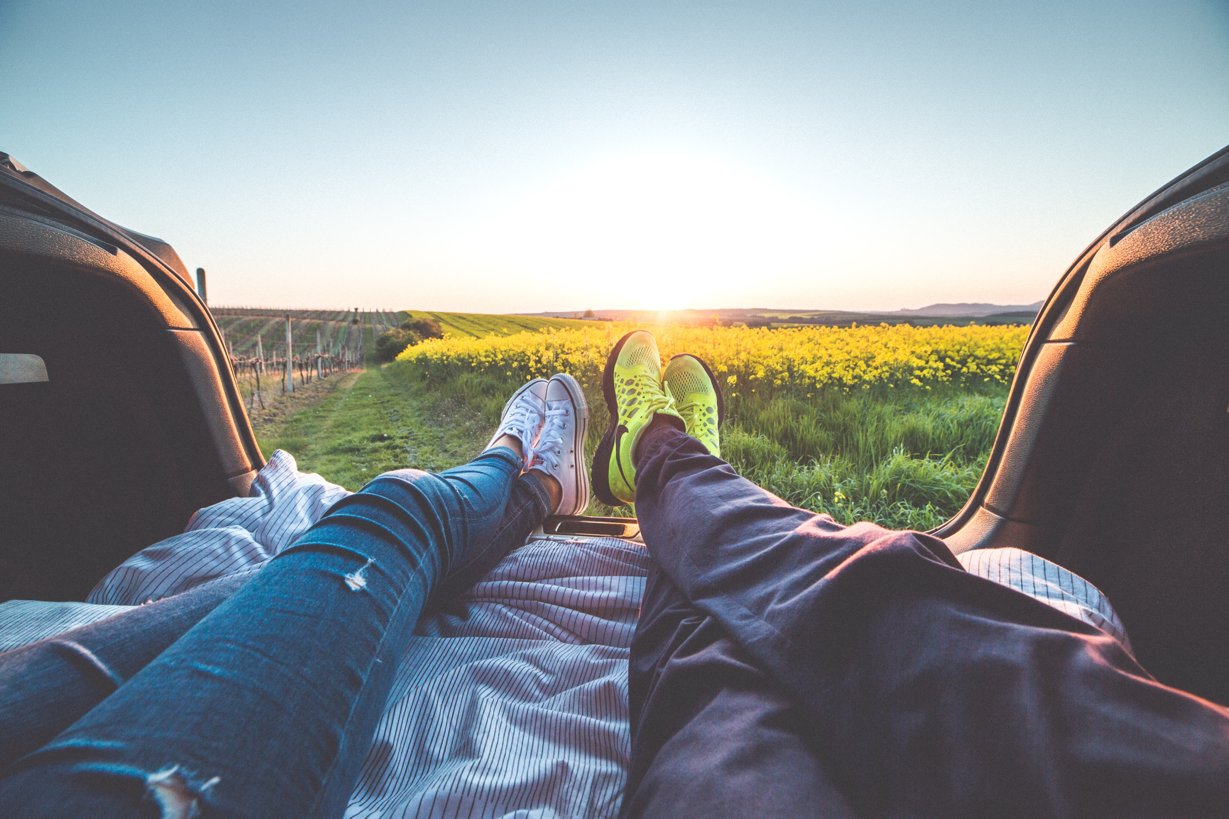 2 people sitting with view of yellow flowers during daytime photo