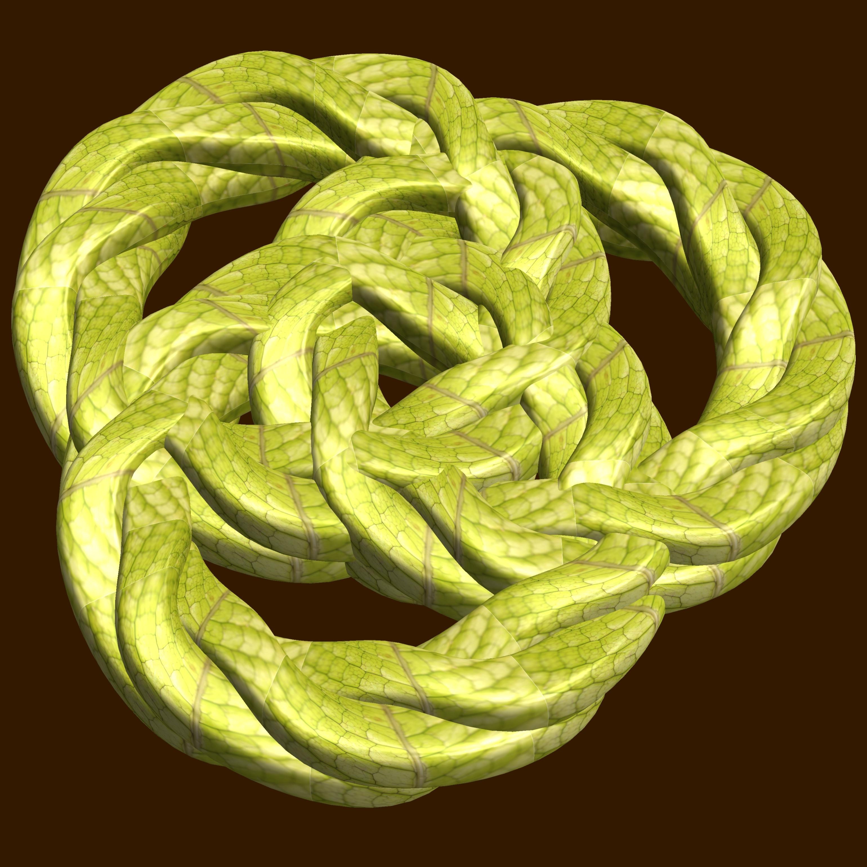 3 knot-tori / 3個の結び目 photo