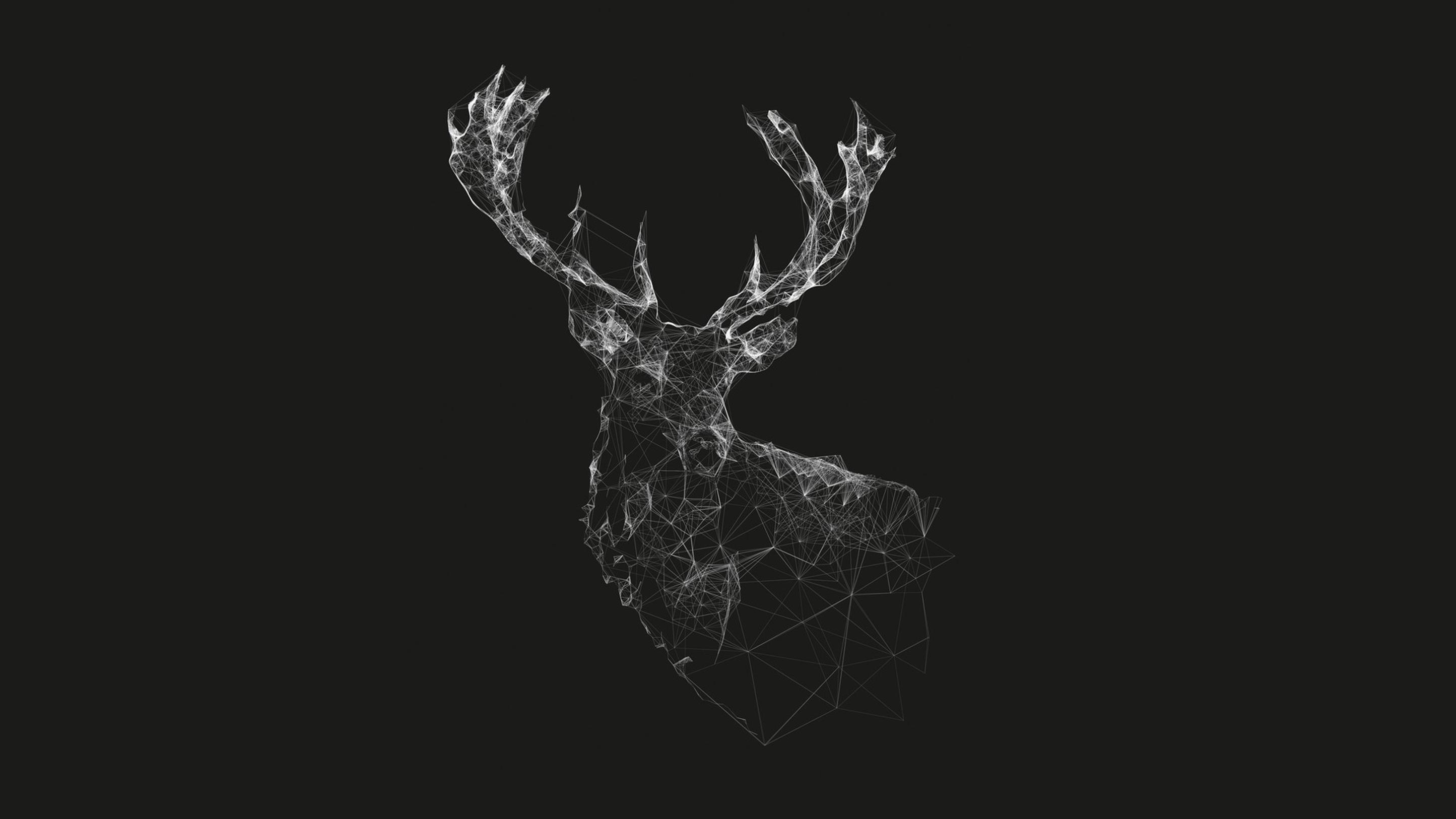WireFrame-Deer-Graphic-HD-Wallpaper | photoshop inspiration | Pinterest