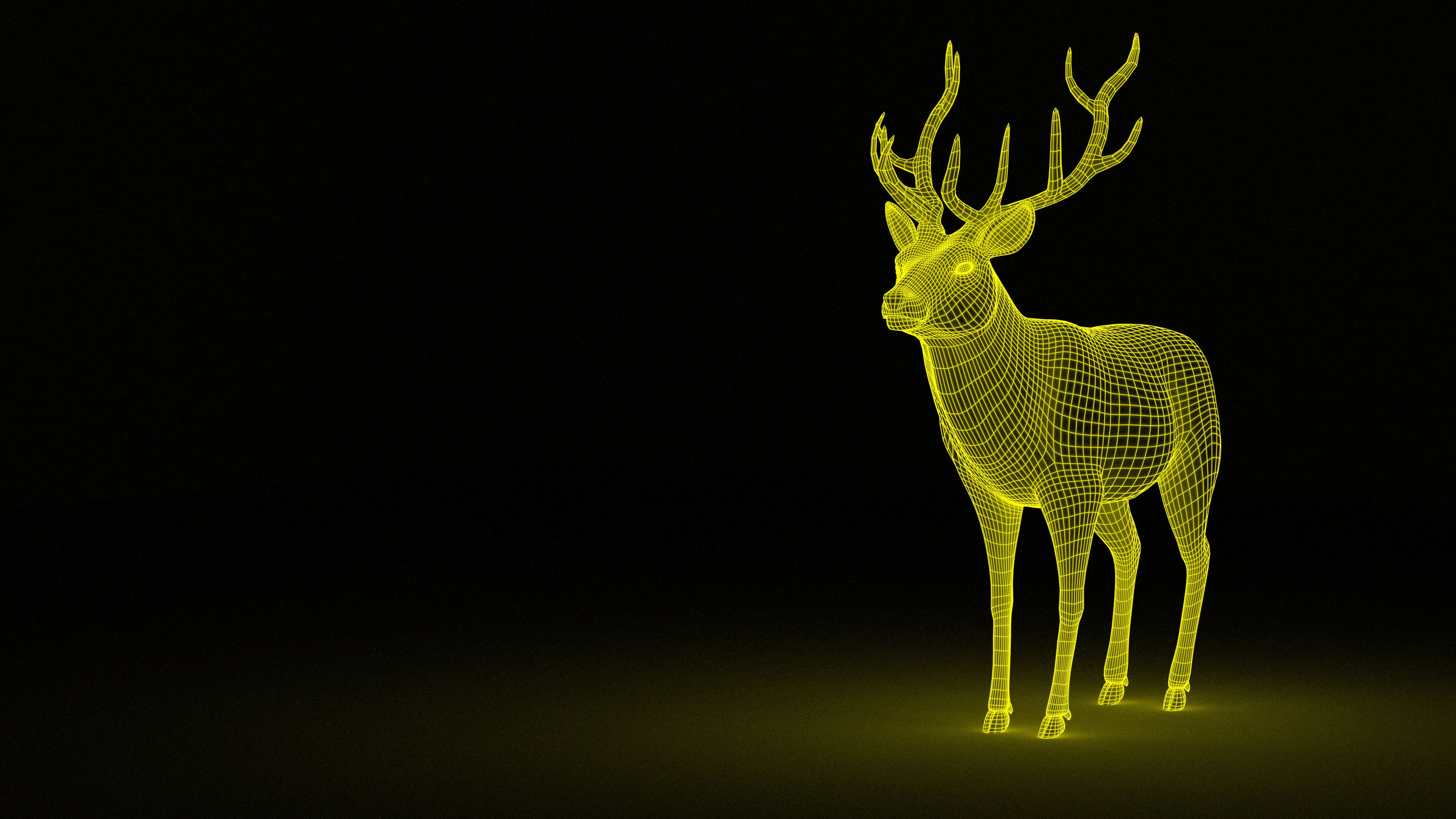 3D Deer Wireframe, 3d, Deer, Drawing, Graphic, HQ Photo