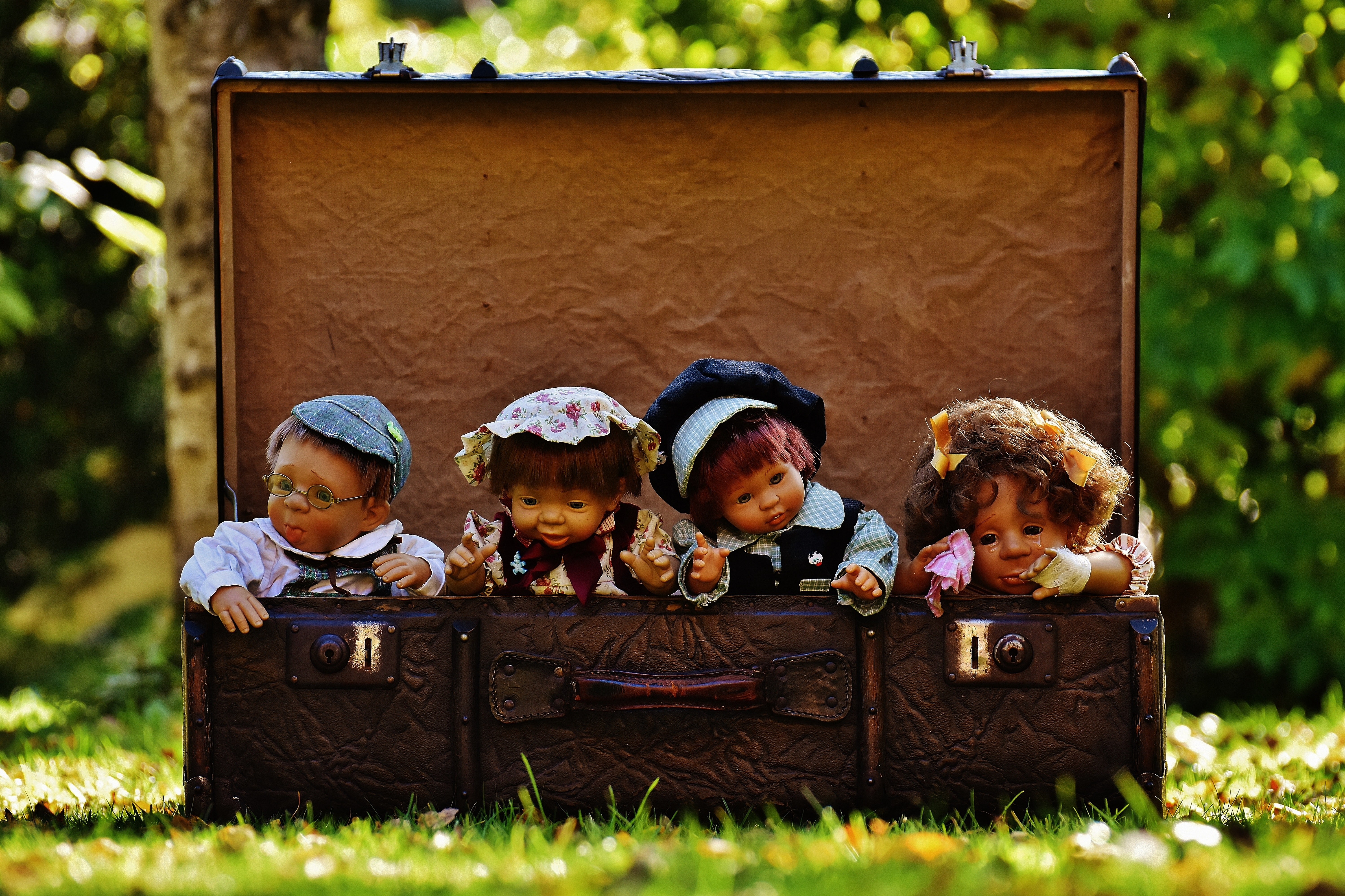 4 Porcelain Dolls in Brown Rectangular Box, Adorable, Outdoors, Junk, Kid, HQ Photo