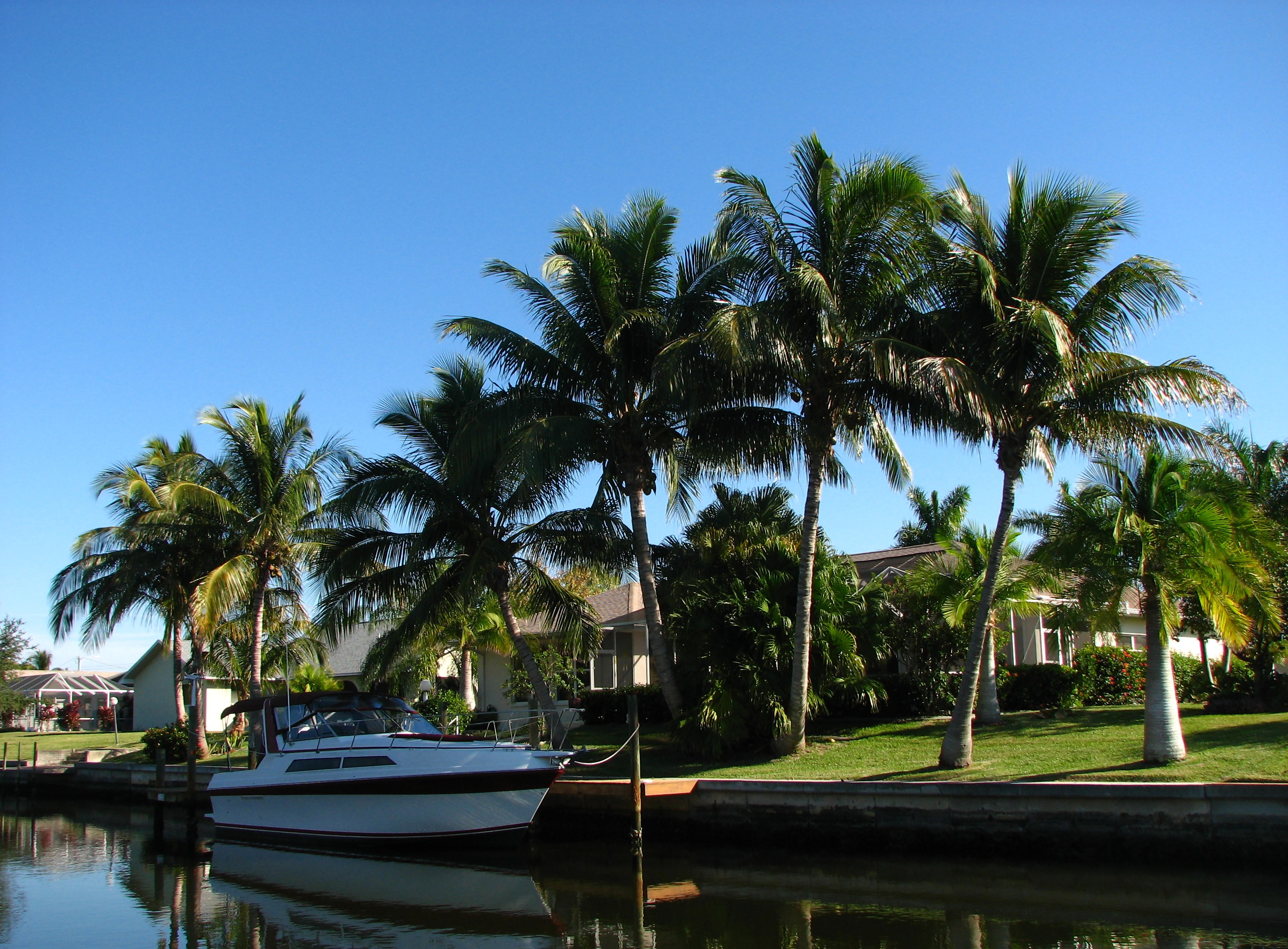 A boat docked by a waterfront house, Blue, Palmtrees, Wealth, Waterfront, HQ Photo