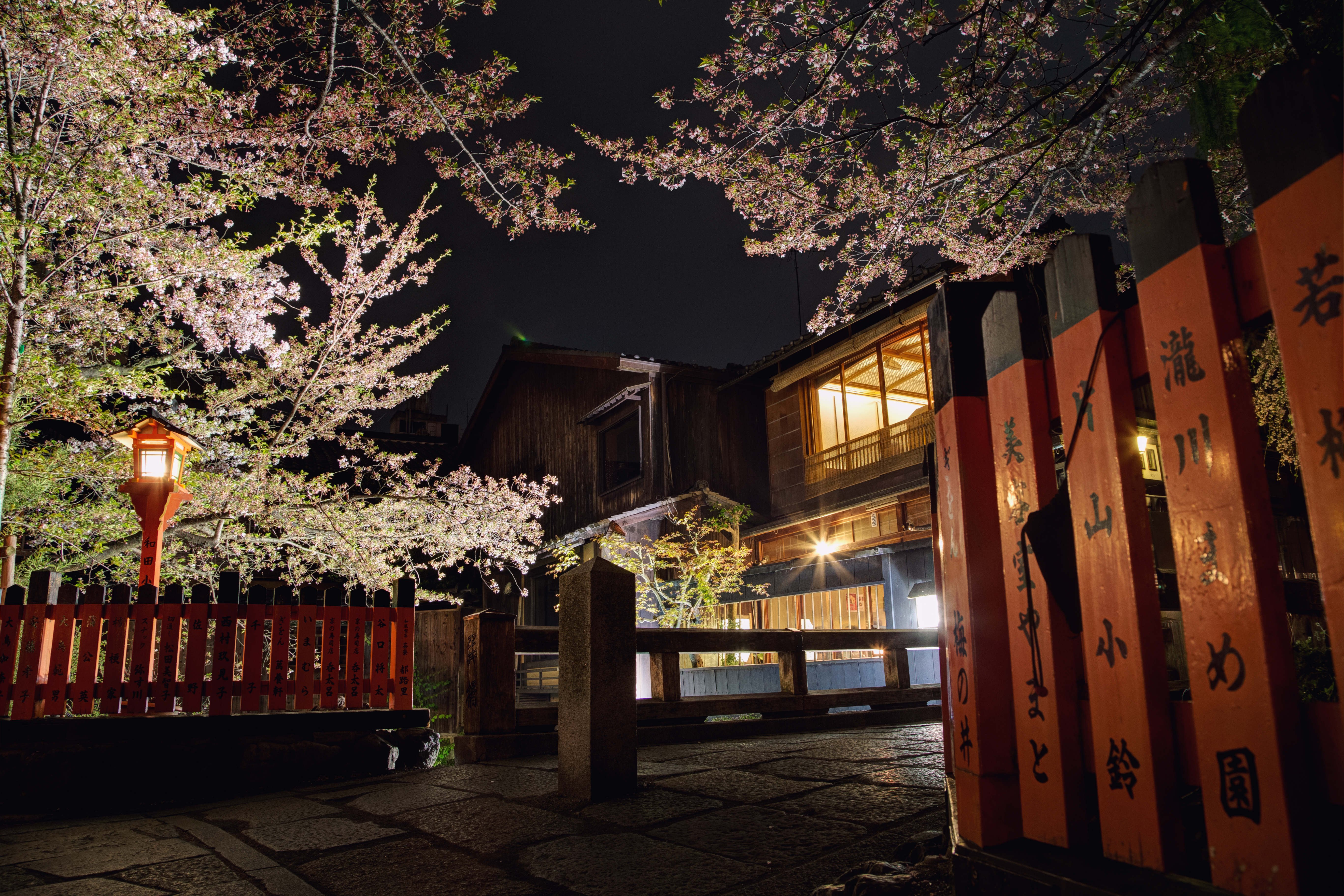A night in gion photo