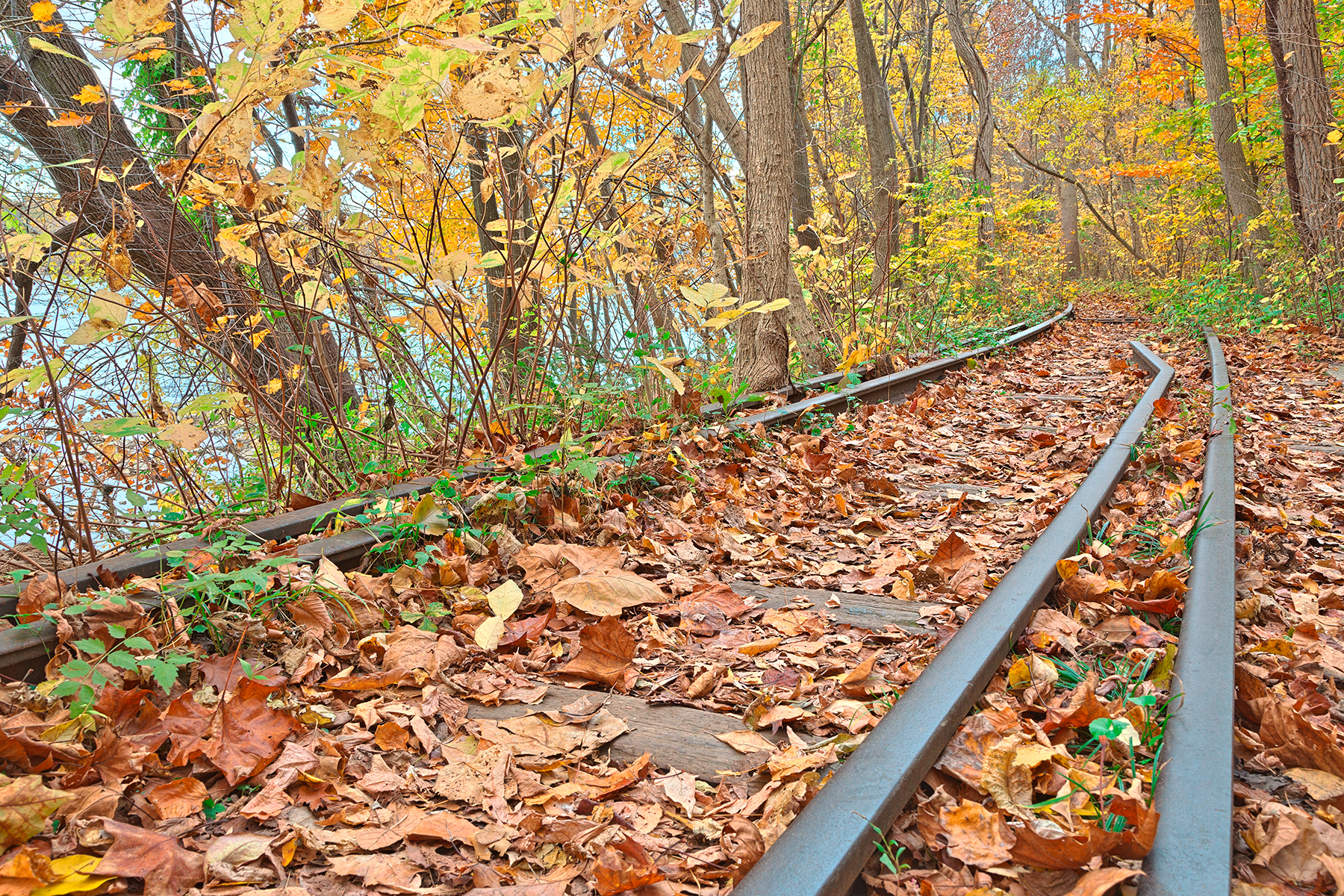Abandoned Autumn Railroad - HDR, Abandoned, Railings, Serenity, Serene, HQ Photo
