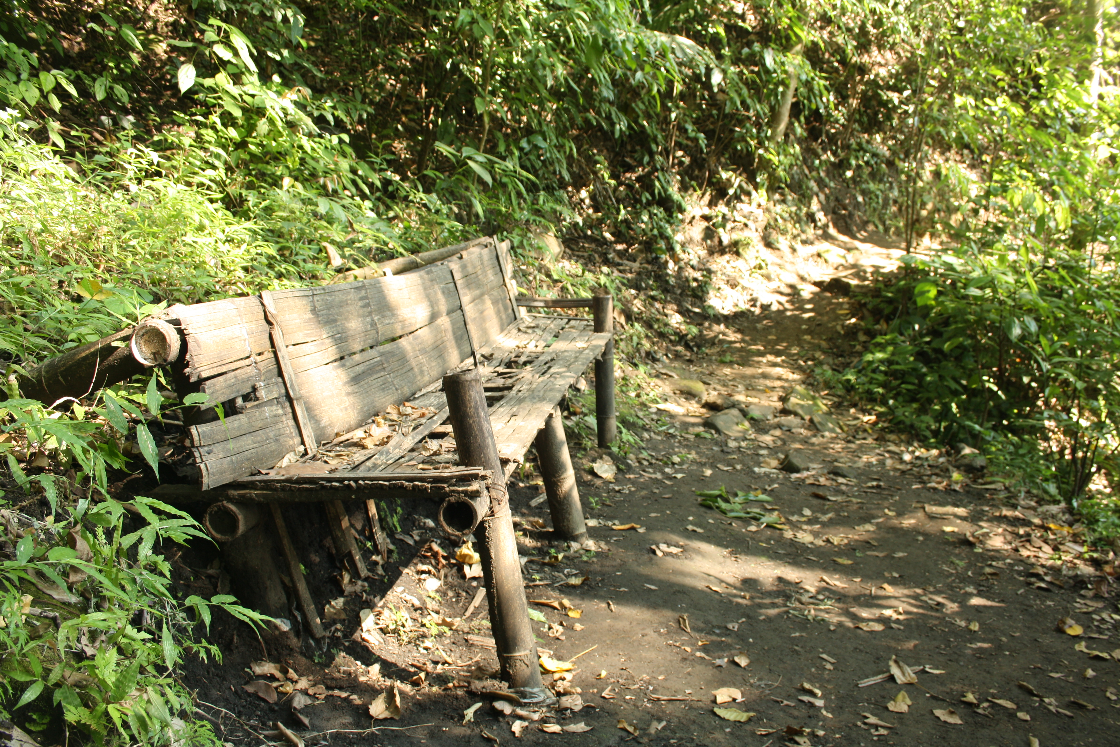 Abandoned bench in the forest photo