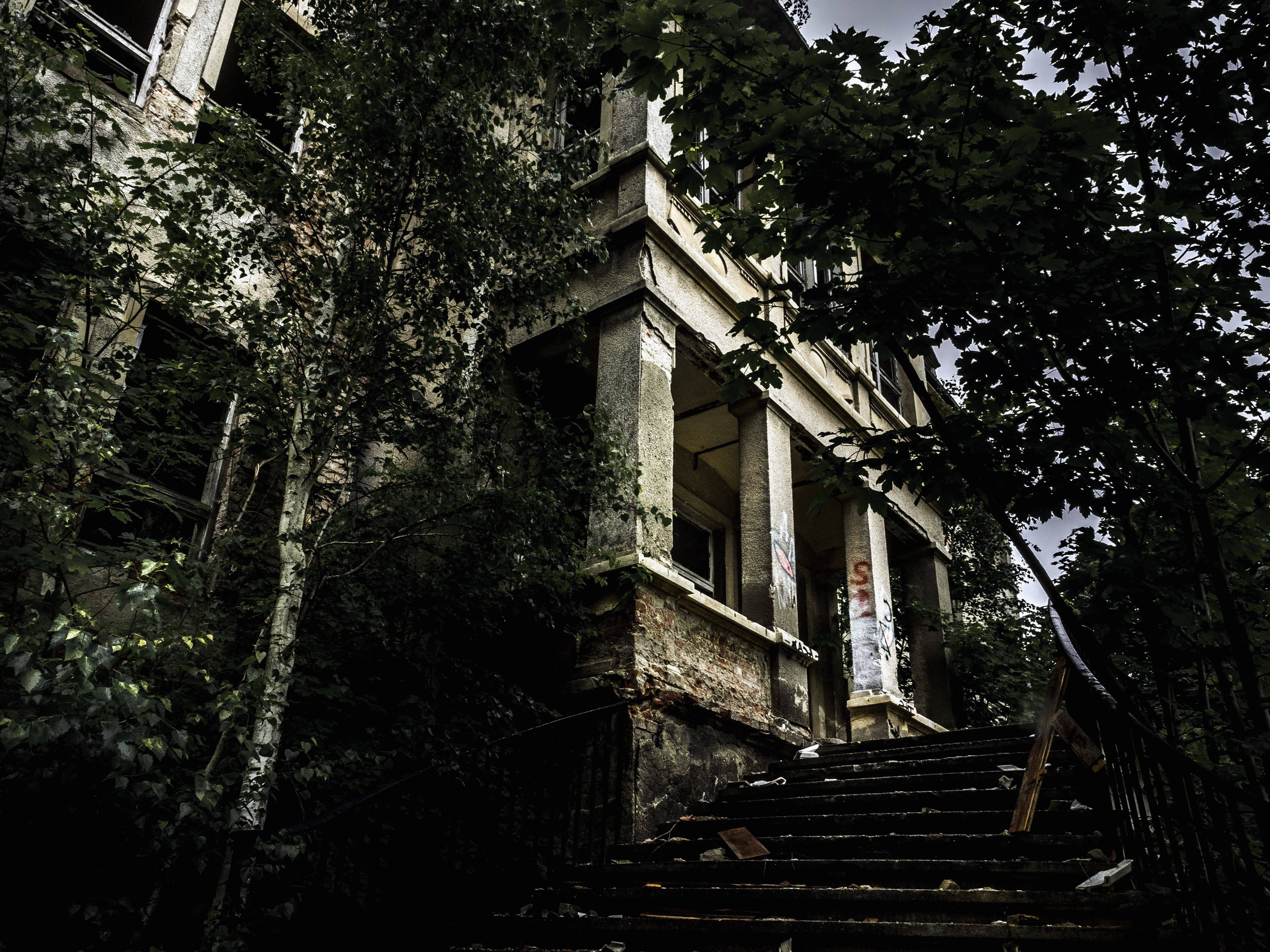 Free picture: staircase, trees, window, abandoned, building ...