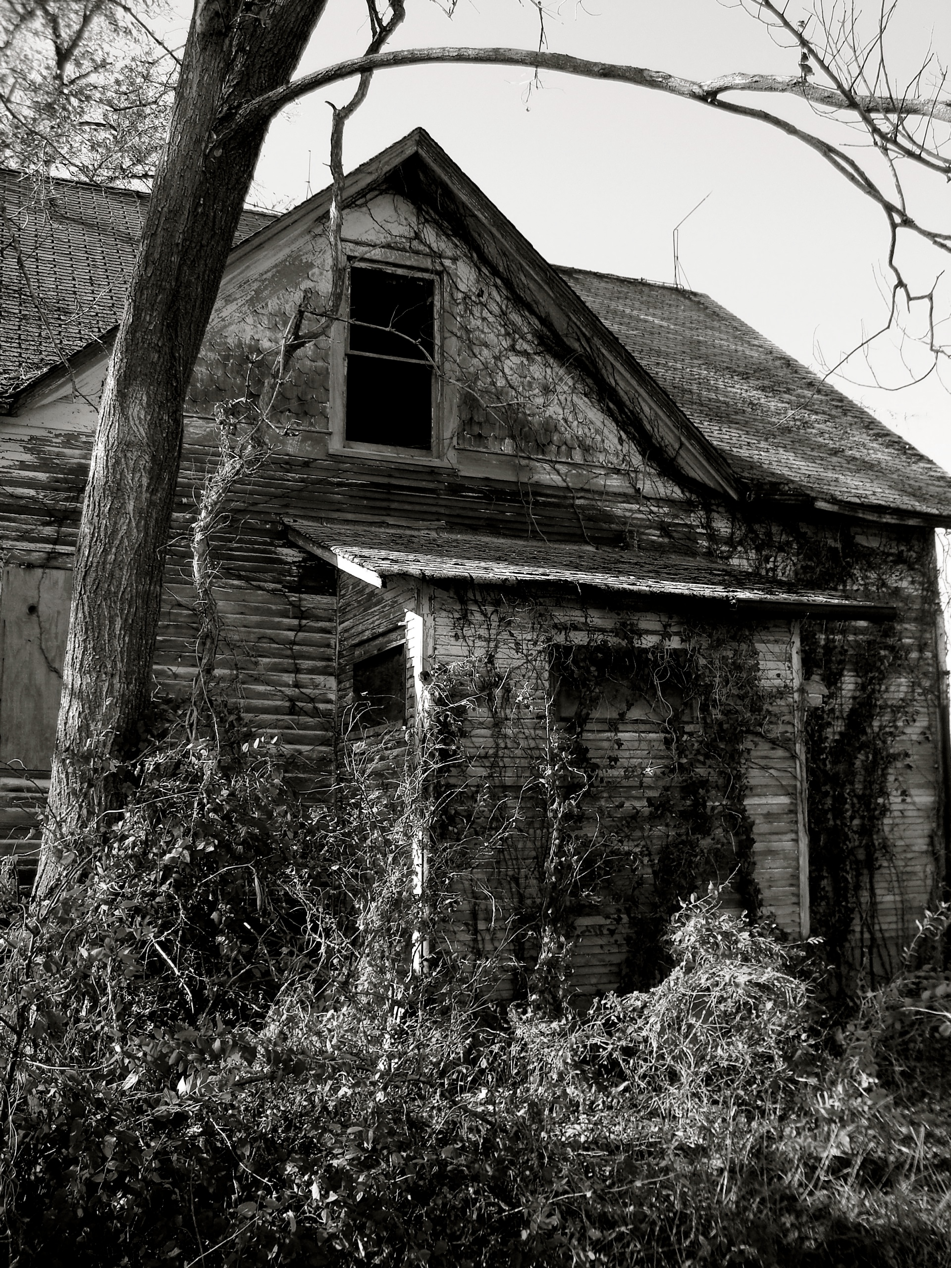 Abandoned house photo