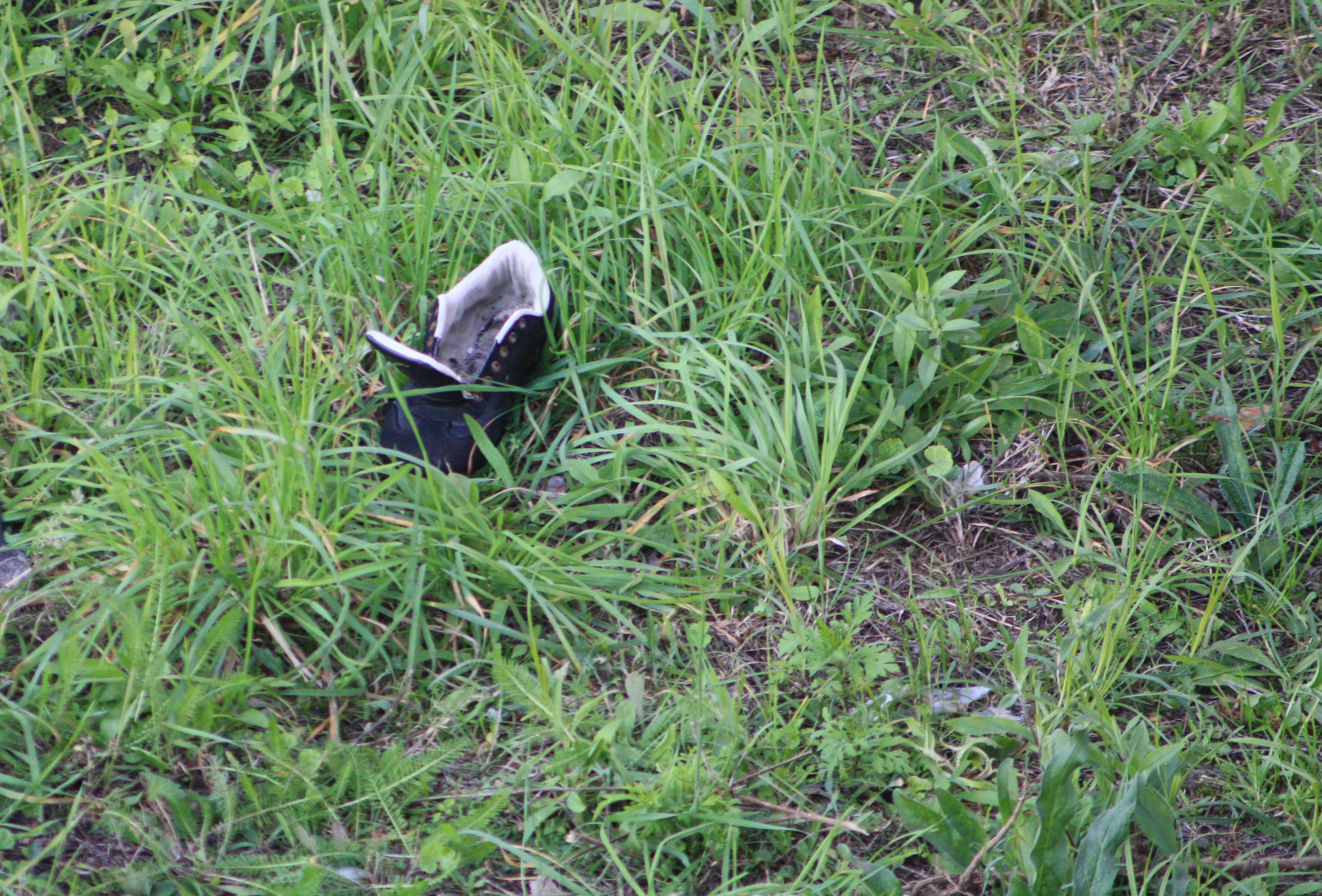Abandoned Shoe, Old, Shoe, Grass, Alone, HQ Photo