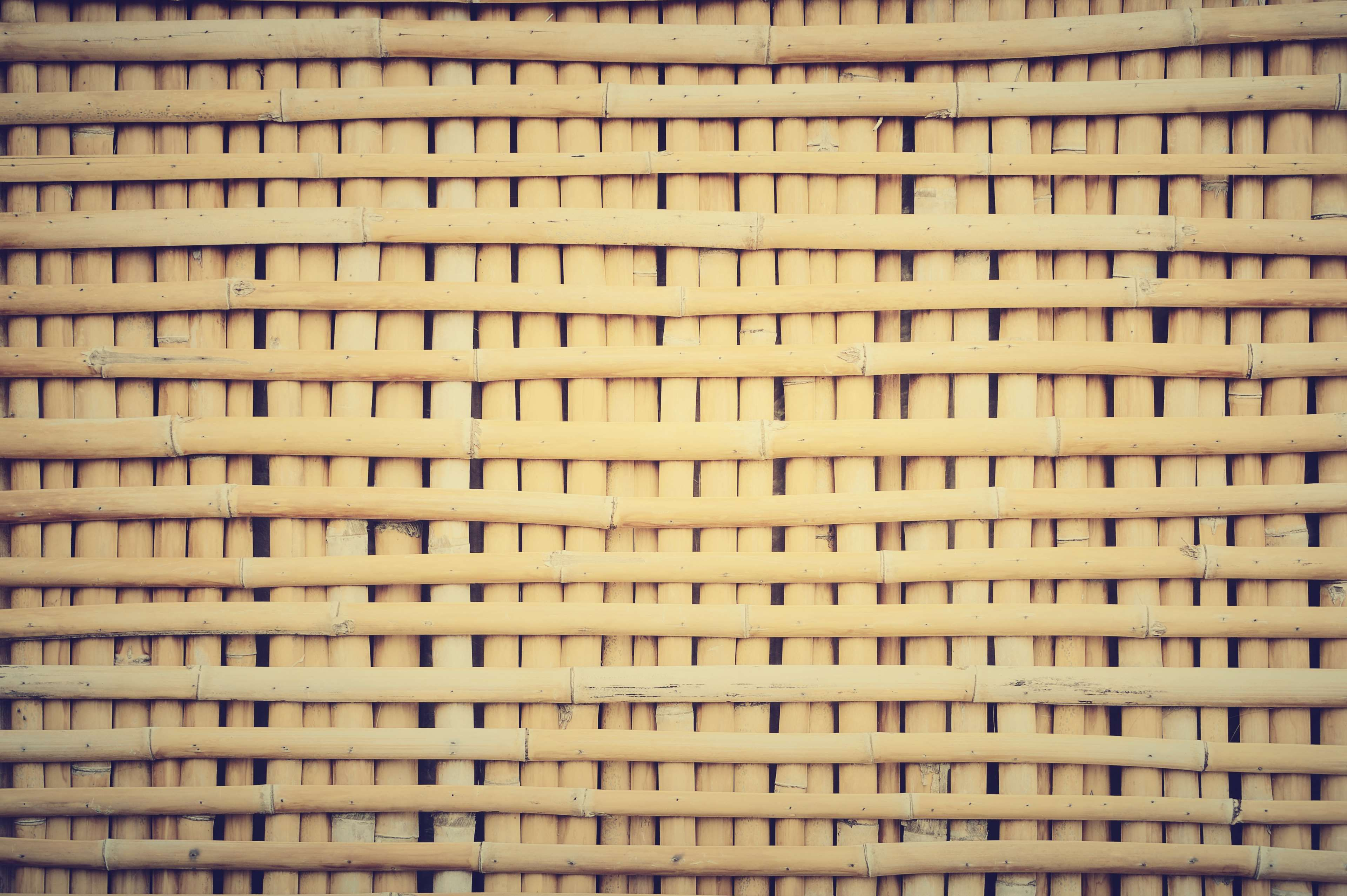 abstract #architecture #asia #asian #background #bamboo #bark #bind ...