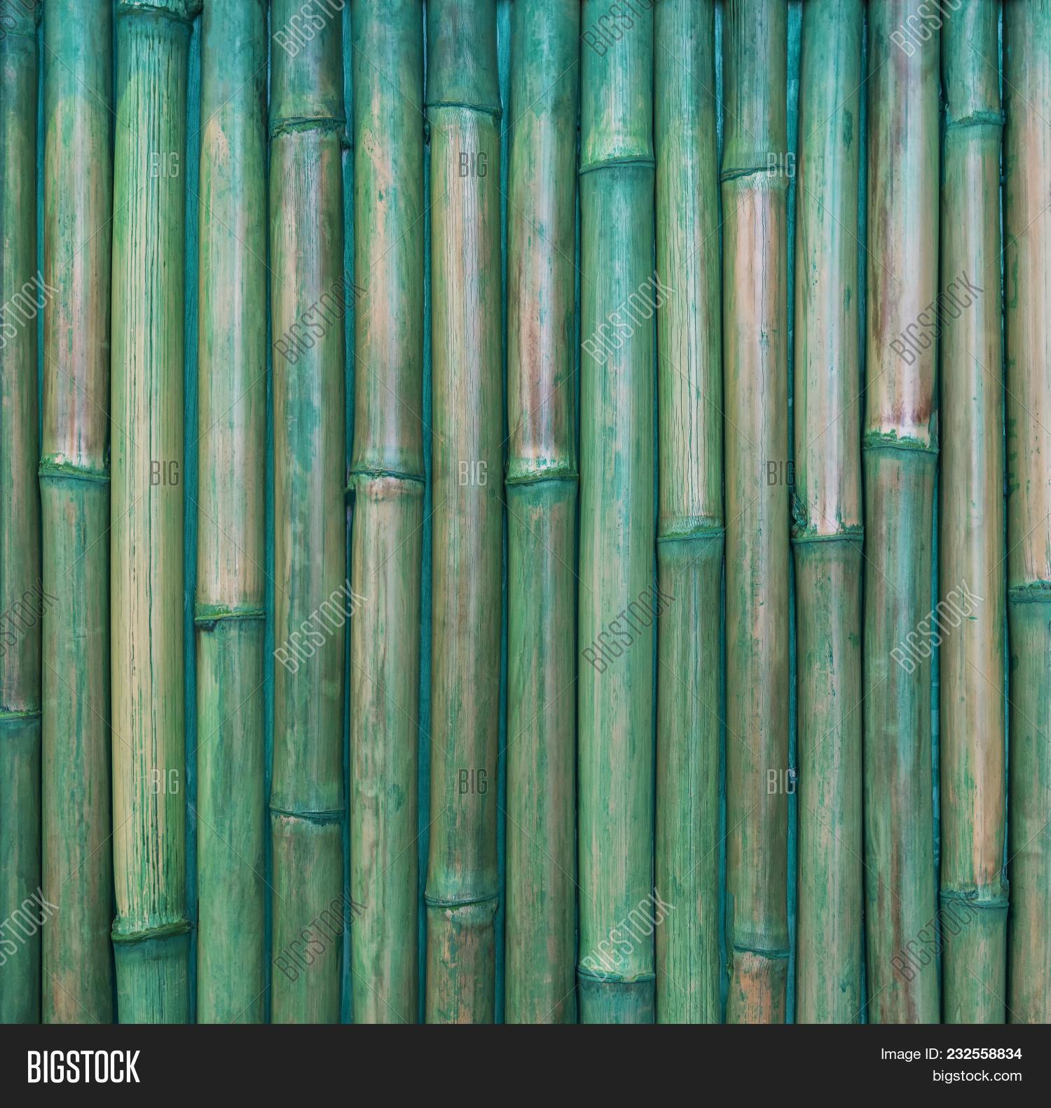 Abstract Background Bamboo Pattern Image & Photo | Bigstock