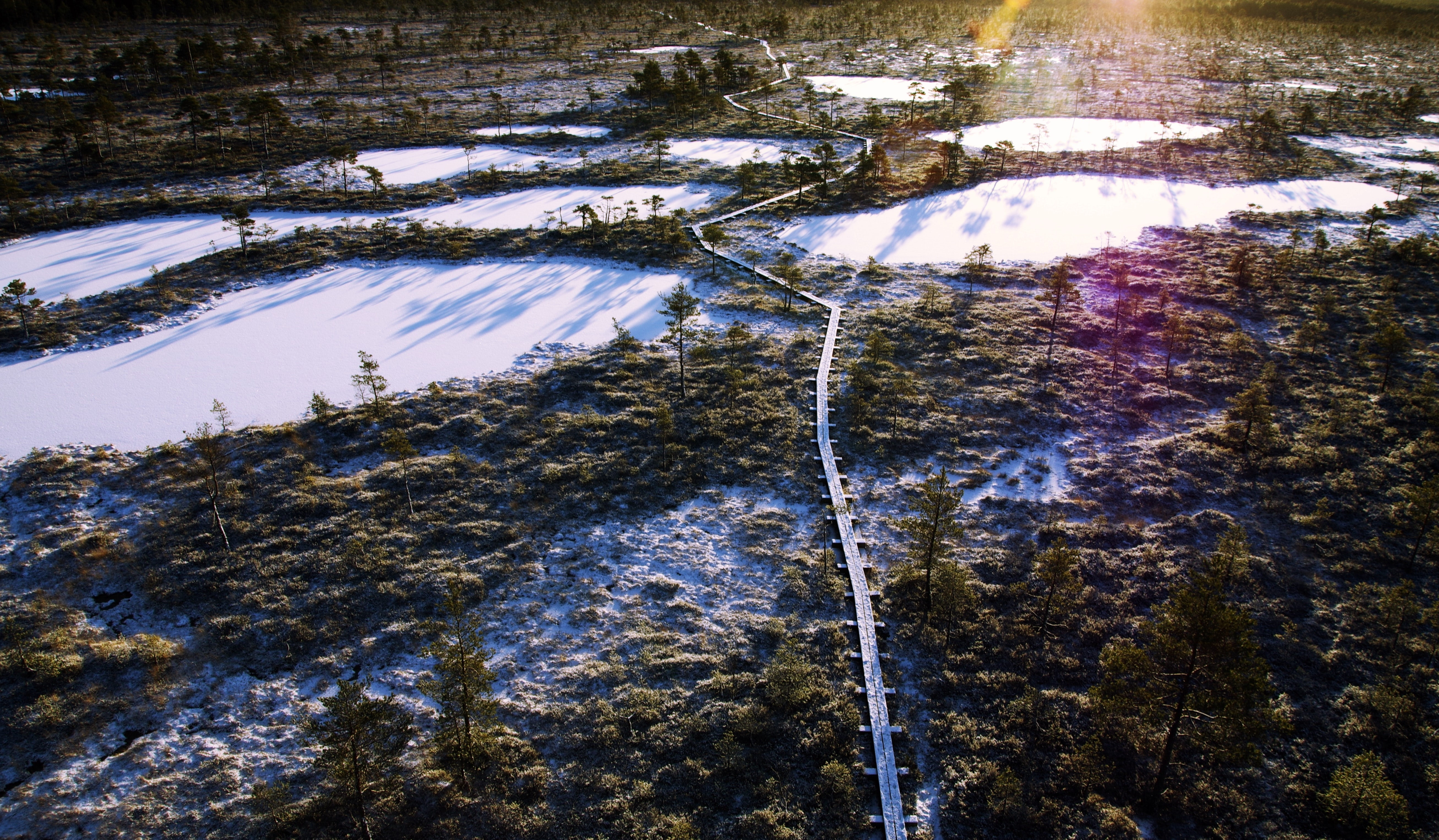 Aerial photo of frozen lakes surrounded by trees