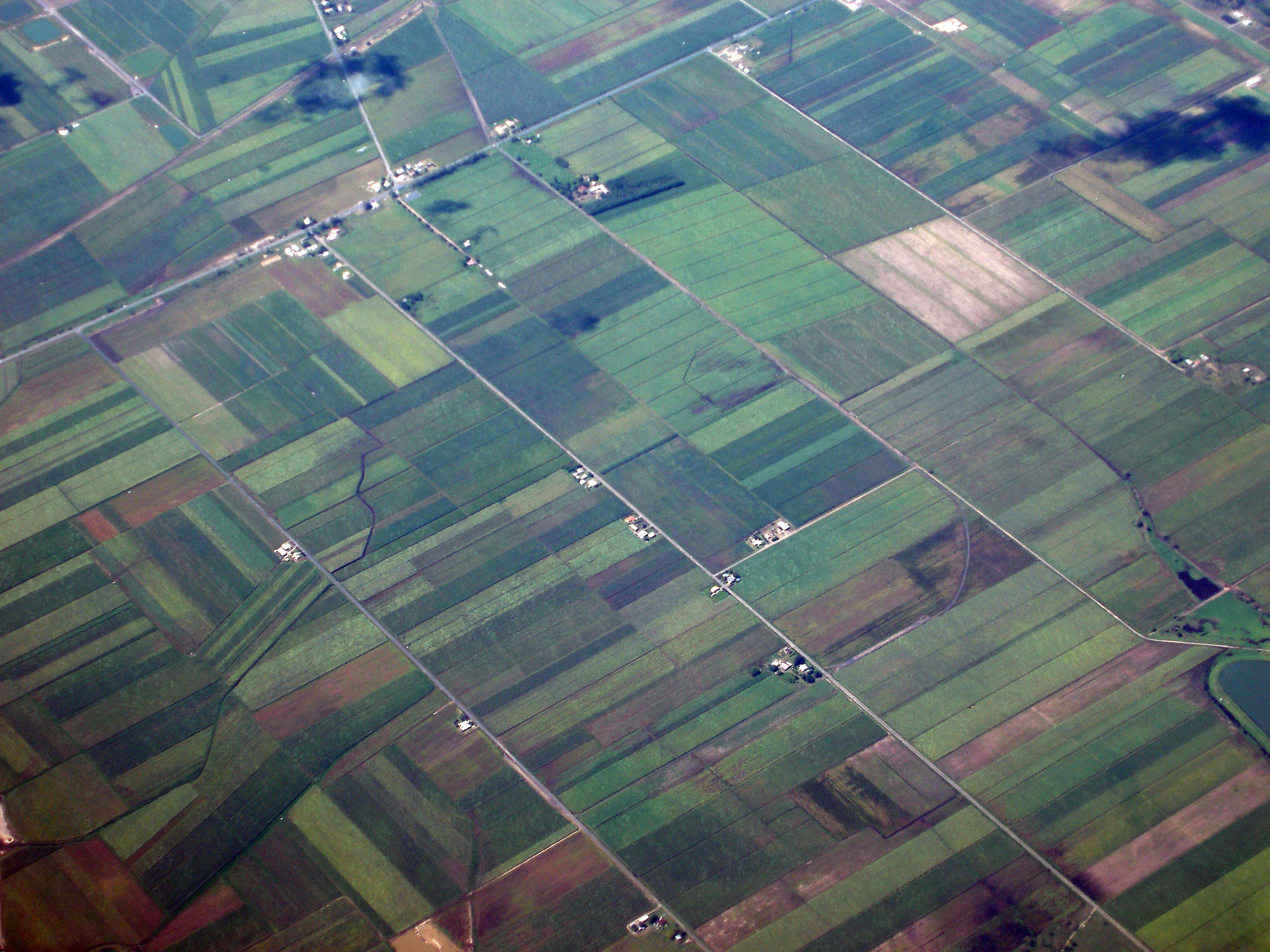 Free image of Aerial view of cultivated farmland