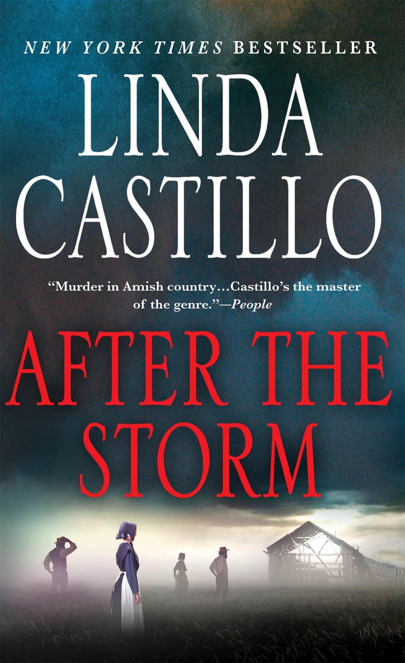 After the Storm: A Kate Burkholder Novel: Linda Castillo ...