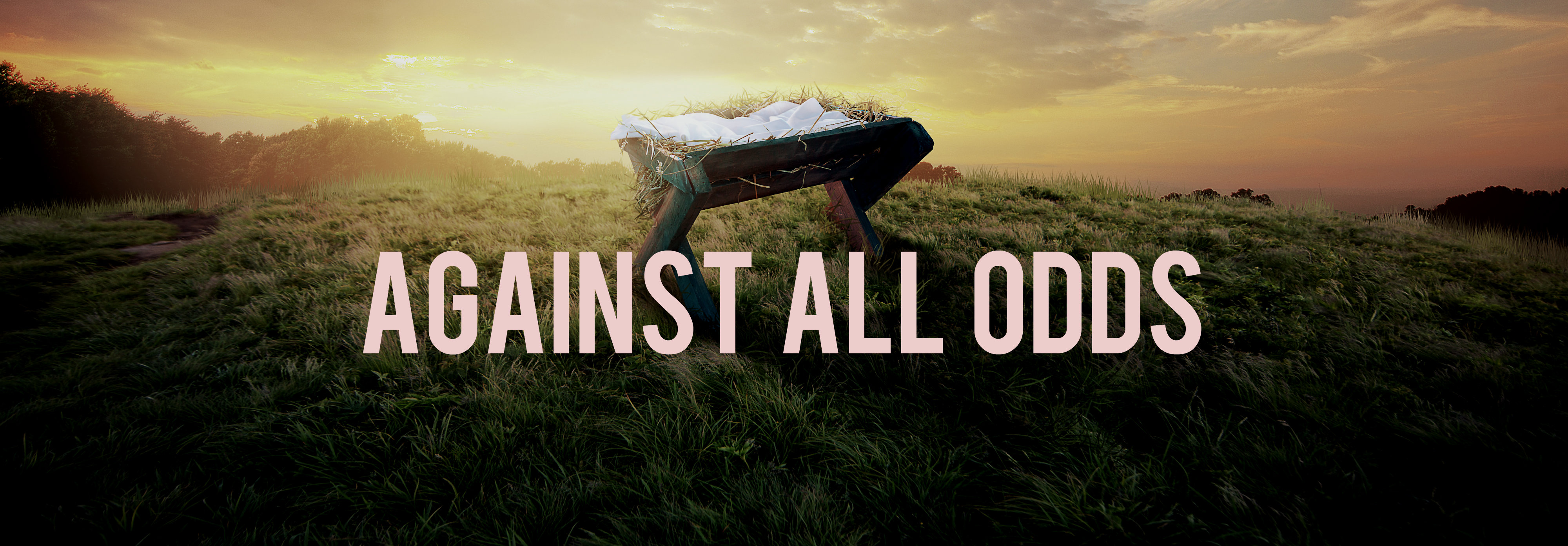 Against the odds photo