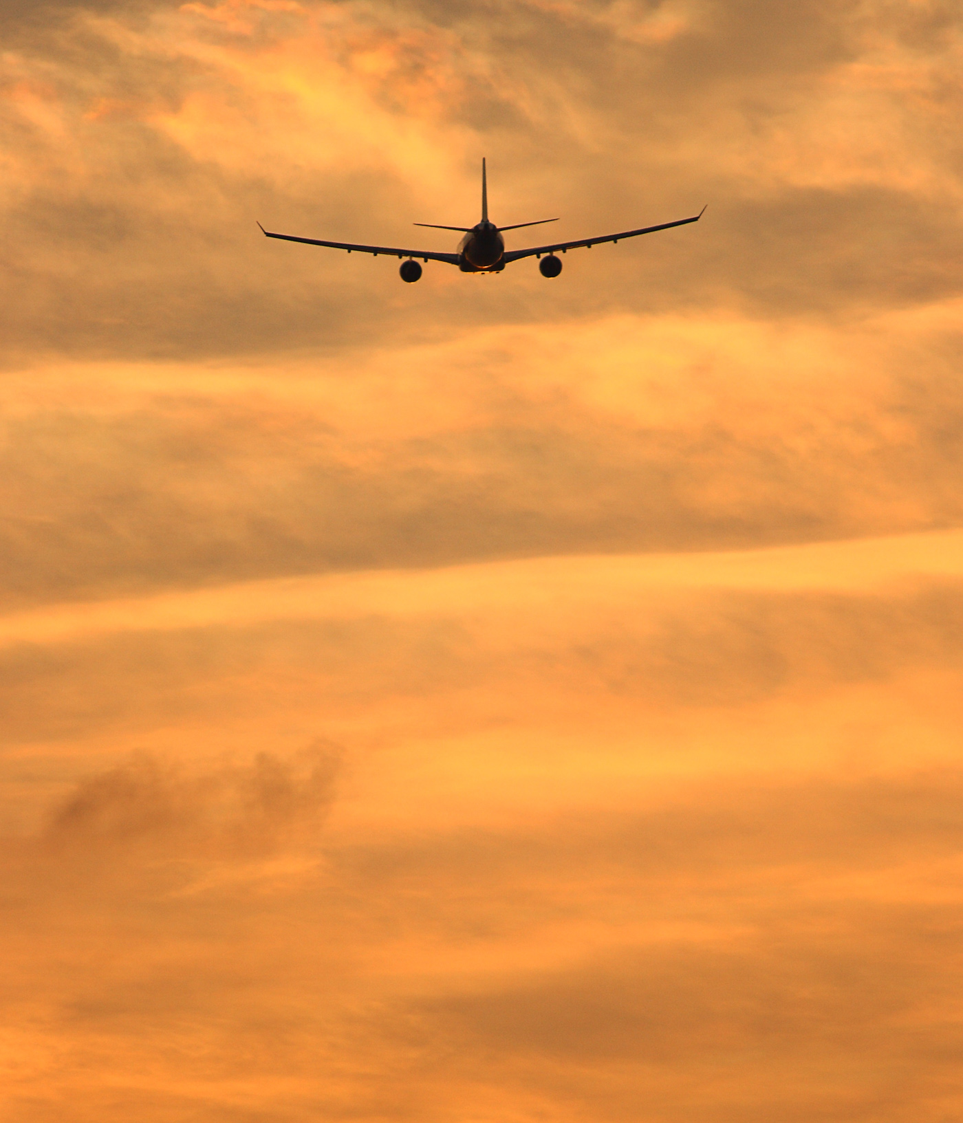 Airplane flying to a tropical destination into the sunset photo