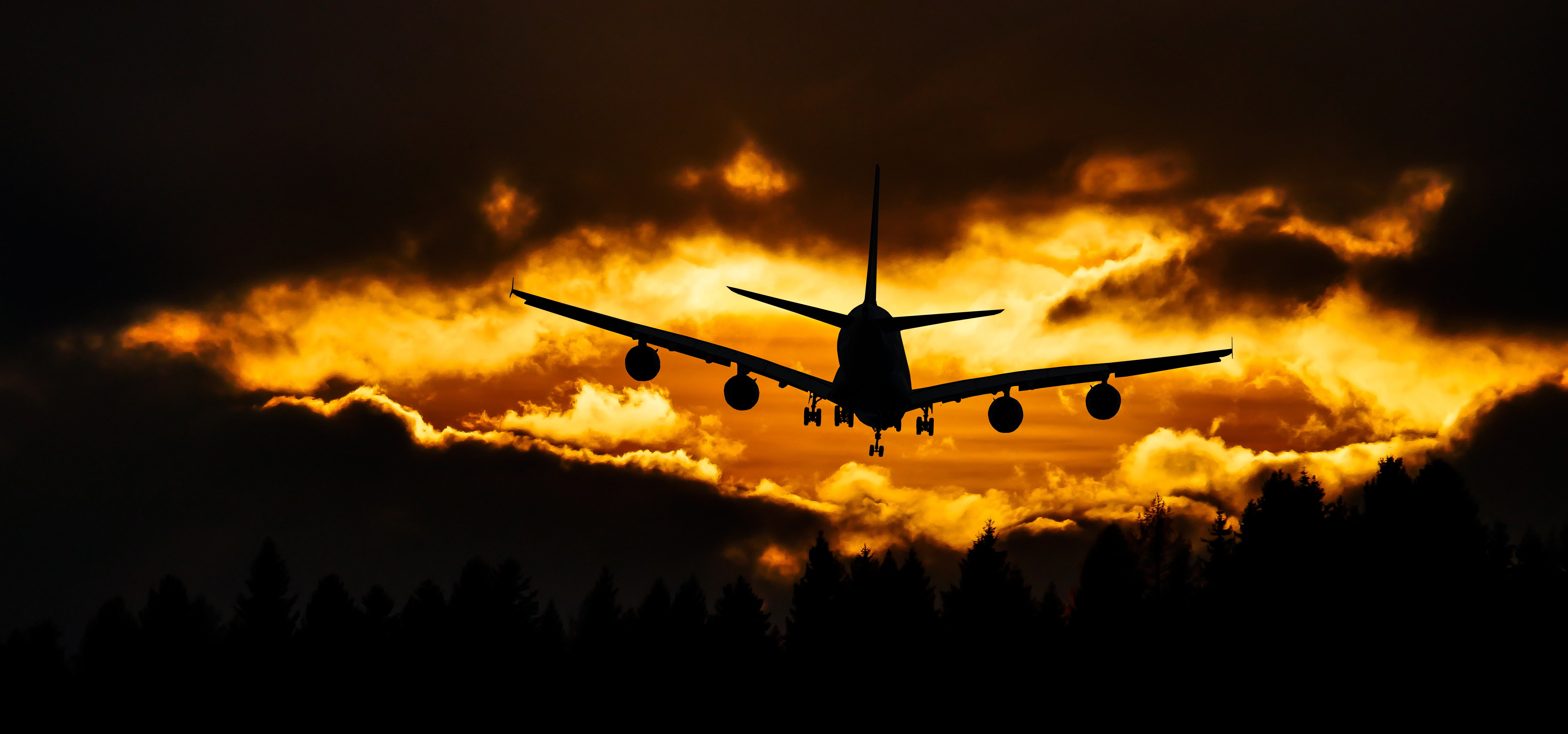 Airplane silhouette on air during sunset photo