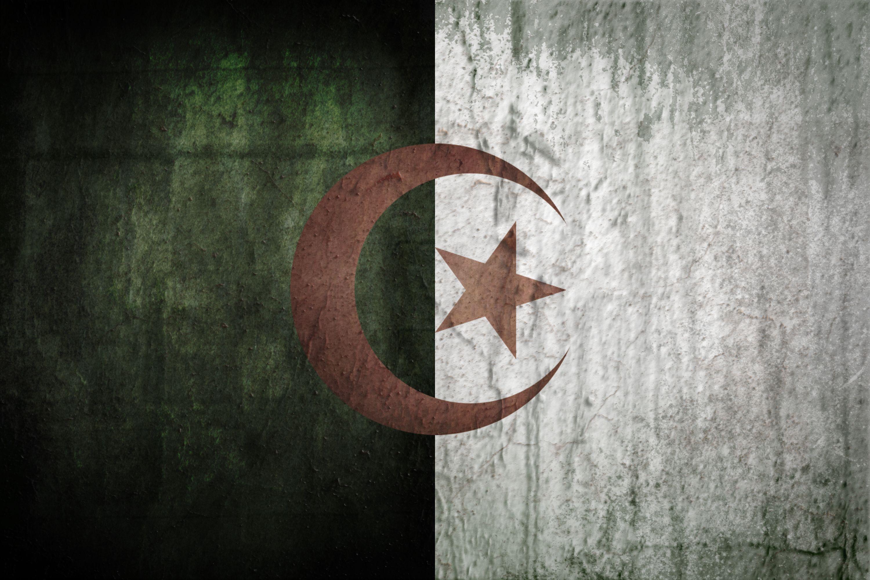 Algeria grunge flag | Flags | Pinterest