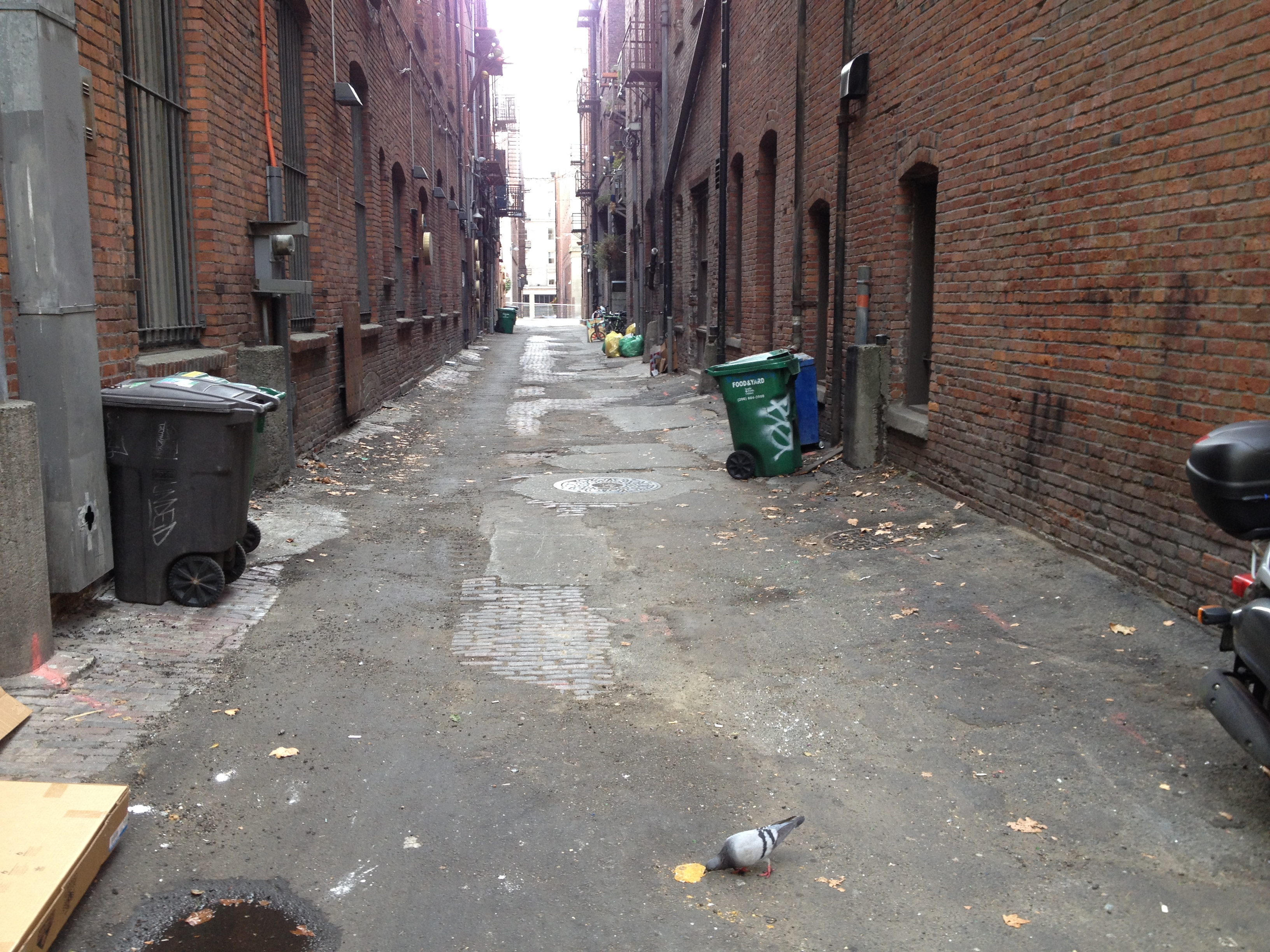 Canton, Nord, & Pioneer Passage Alley Improvement Project ...