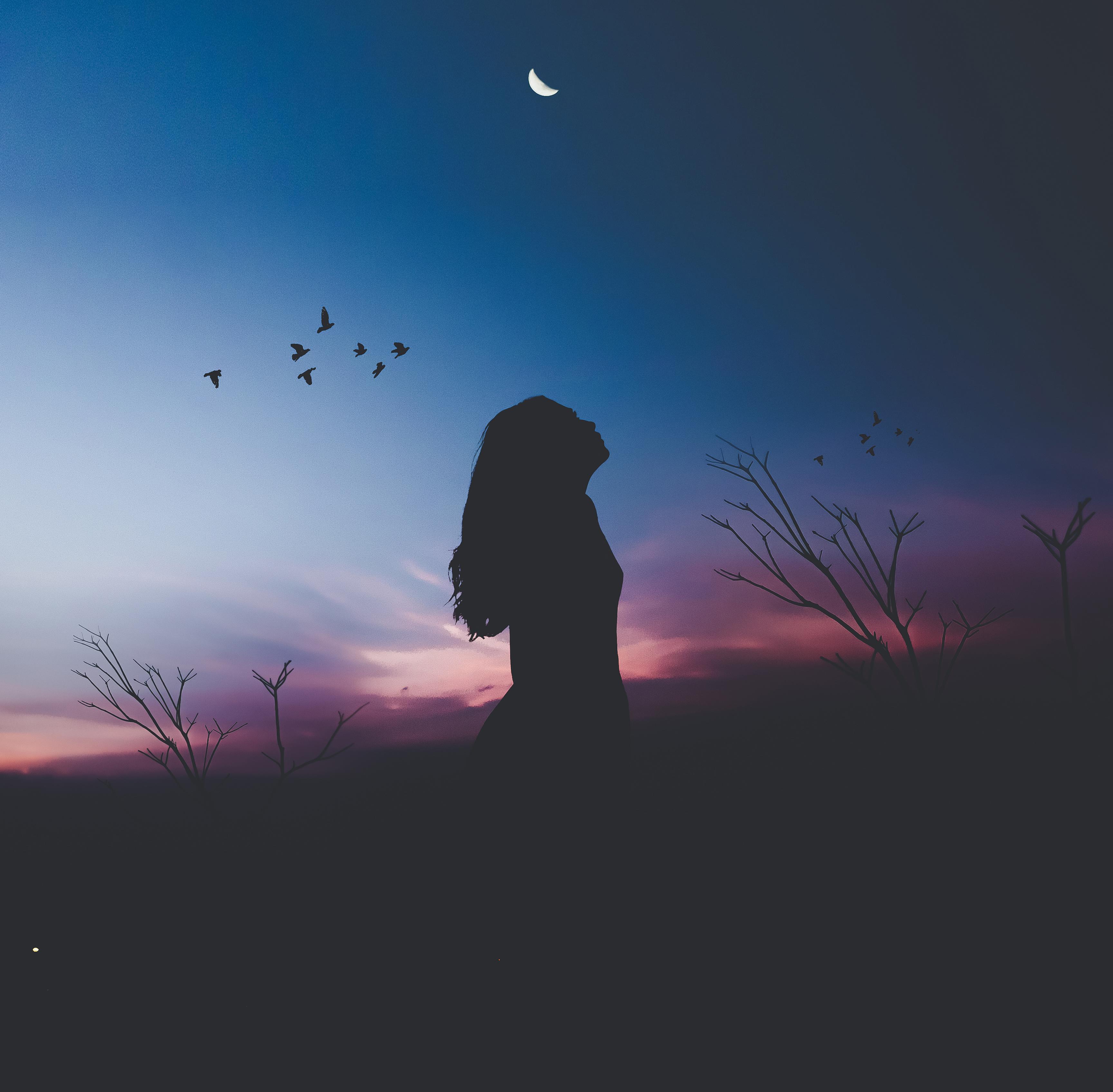 Wallpaper Alone, Woman, Birds, Silhouette, HD, Fantasy, #9662