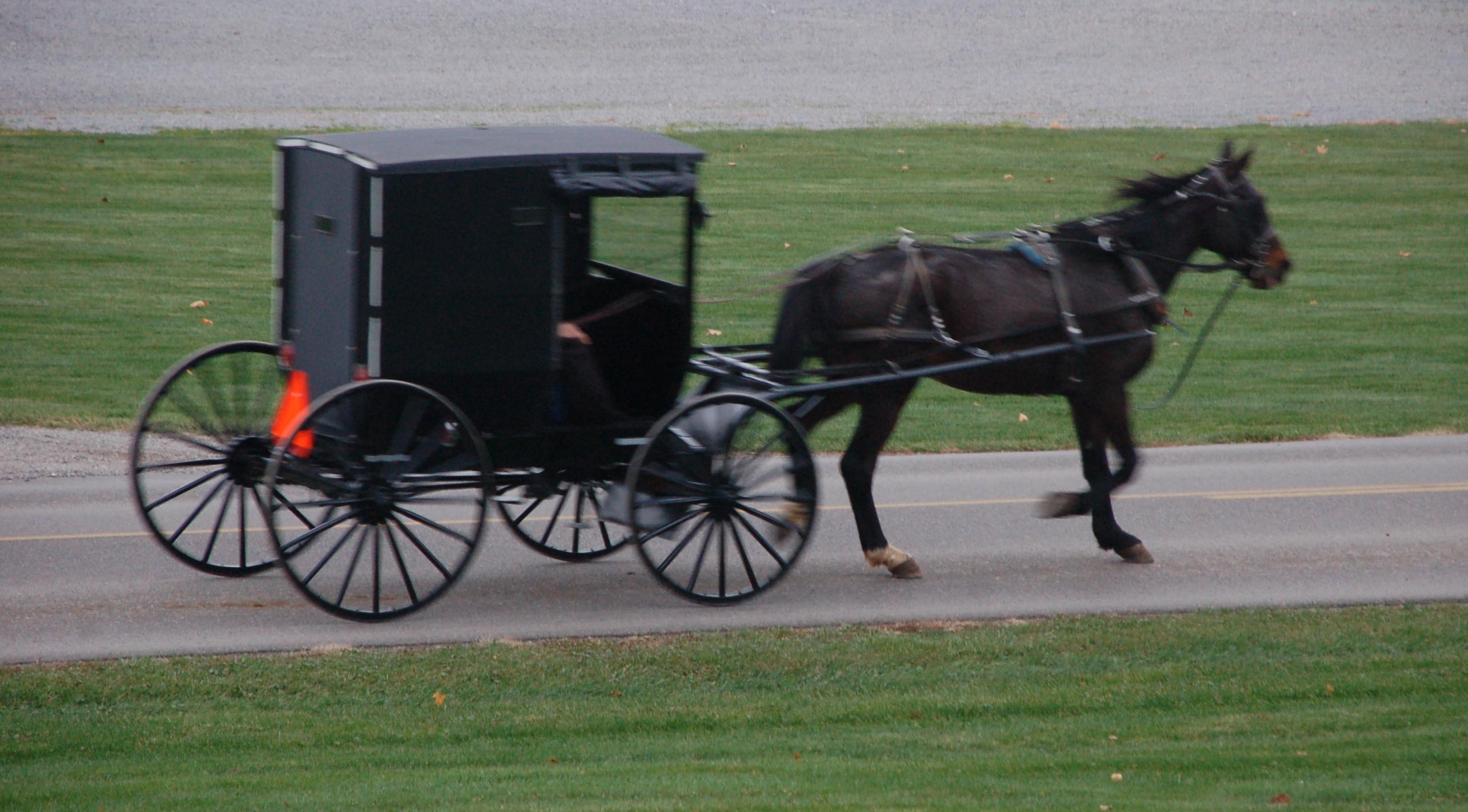 Amish cart photo