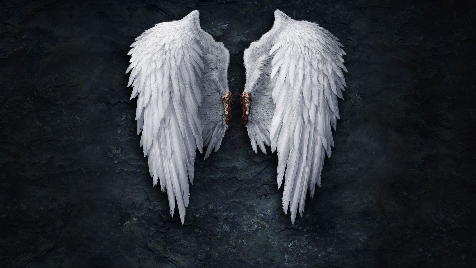 White Angel Wings Picture - DesiComments.com