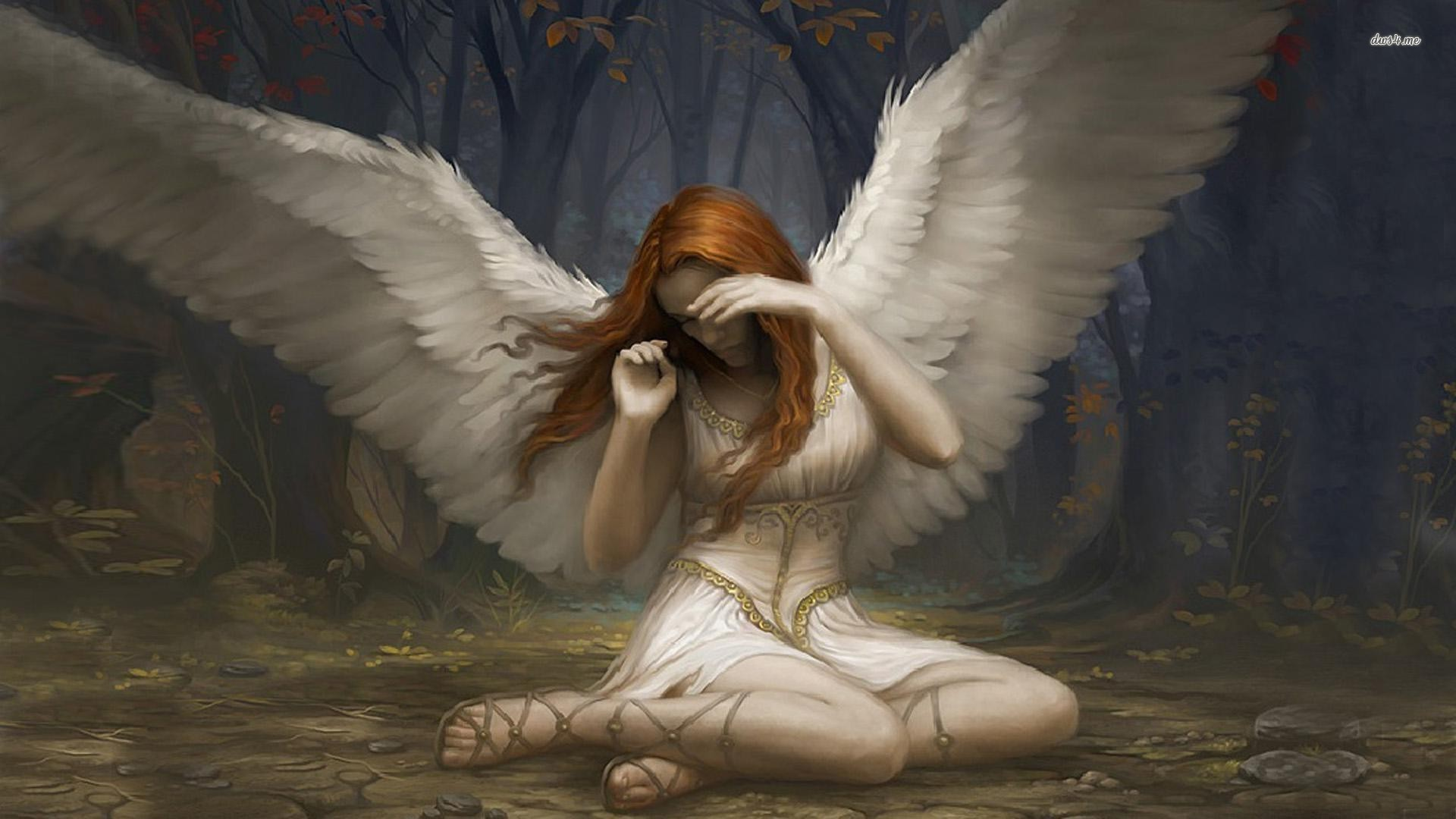 Magic The Gathering Angel Game Hd Wallpaper - Images, Photos, Pictures