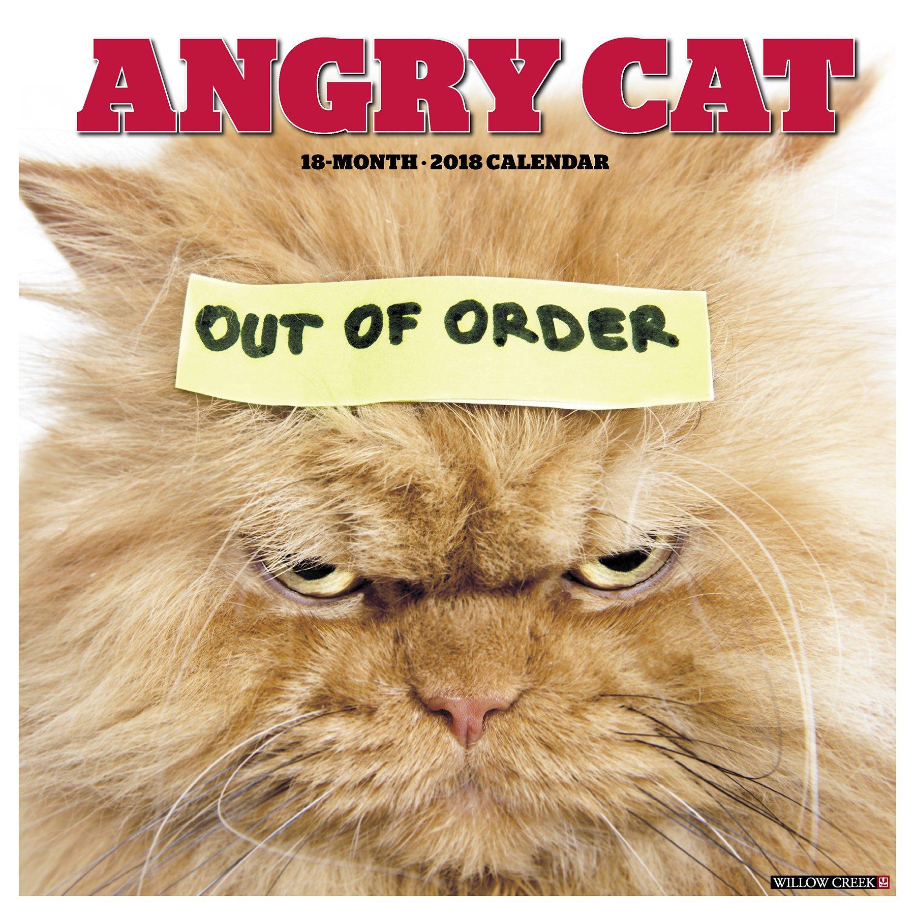 Angry Cat 2018 Calendar: Willow Creek Press: 0709786039975: Amazon ...
