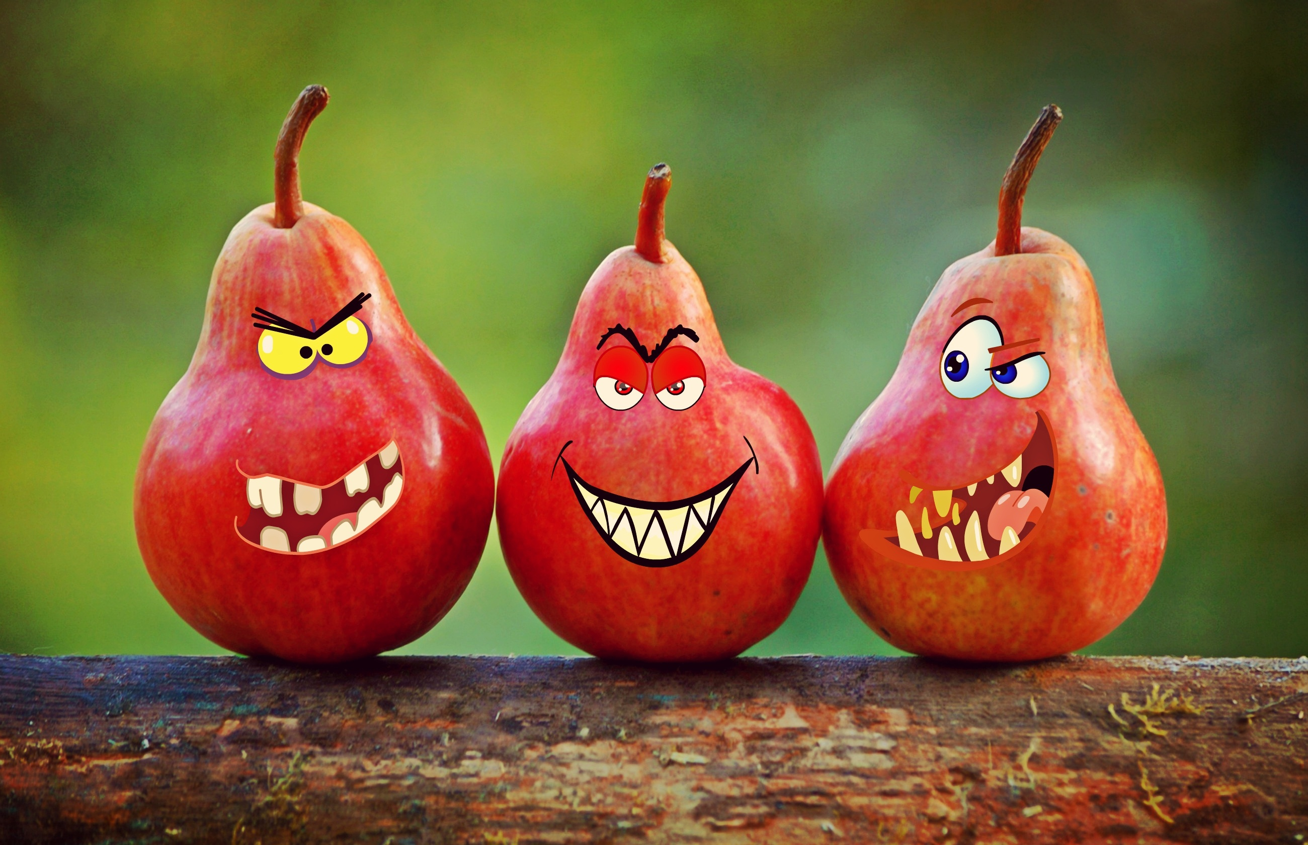Angry red pears photo