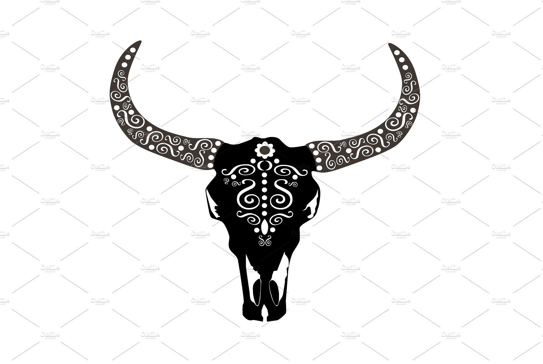 Animal skull photo