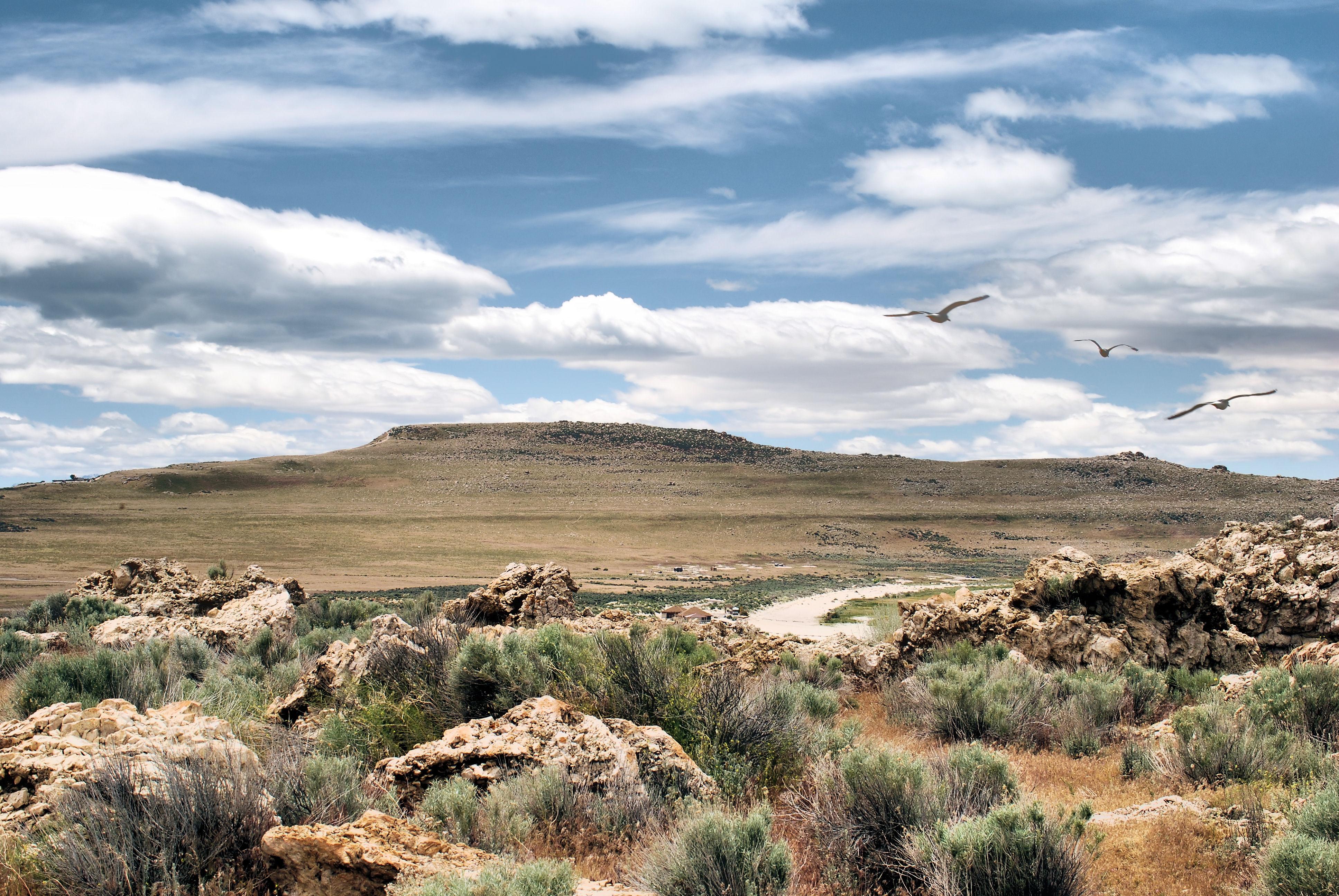 Antelope Sky, Antelope, Clouds, Desert, Island, HQ Photo