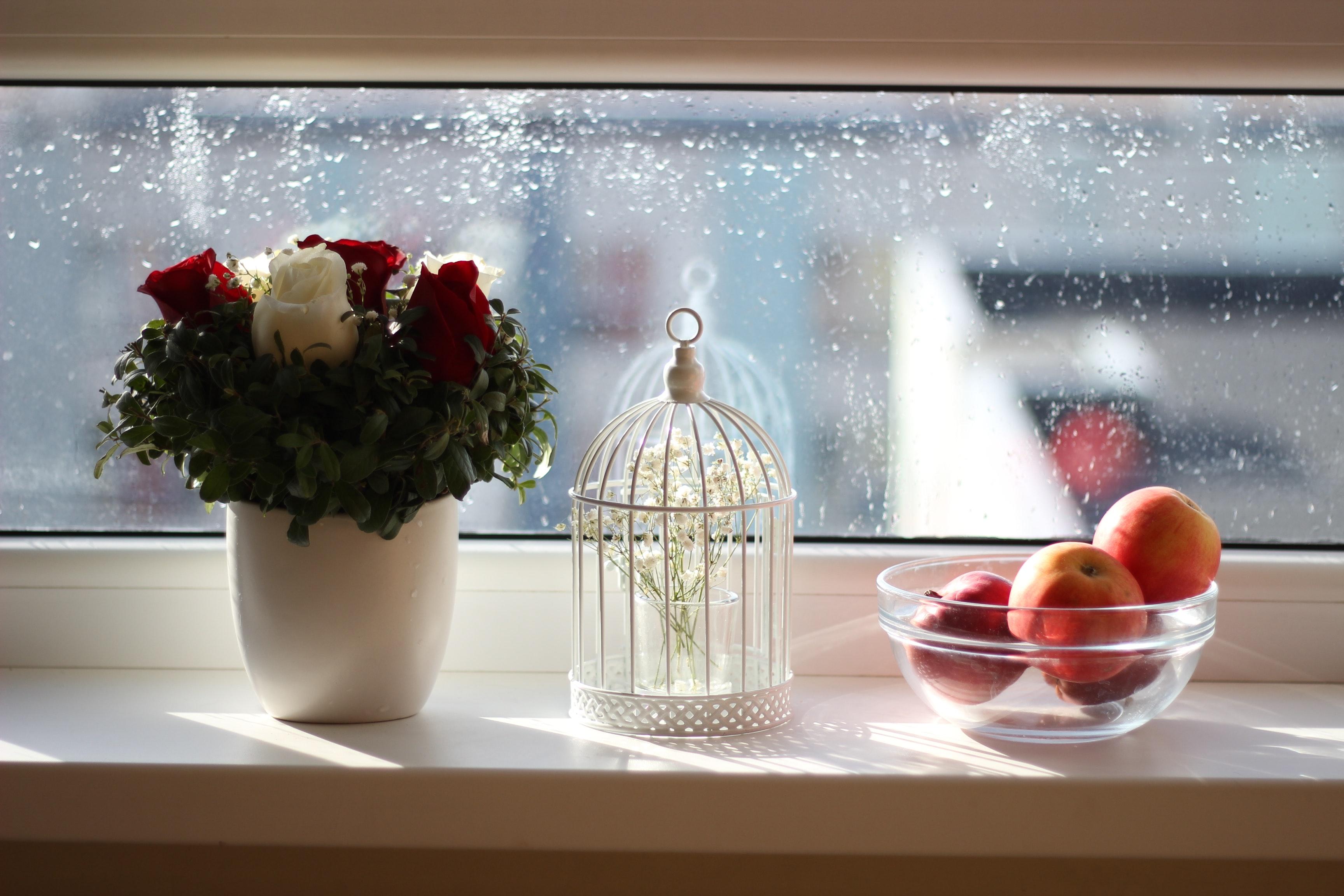 Apples in Ball Near Flowers in Vase Interior Inside Indoors Interior design & Free photo: Apples in Ball Near Flowers in Vase - Interior Inside ...