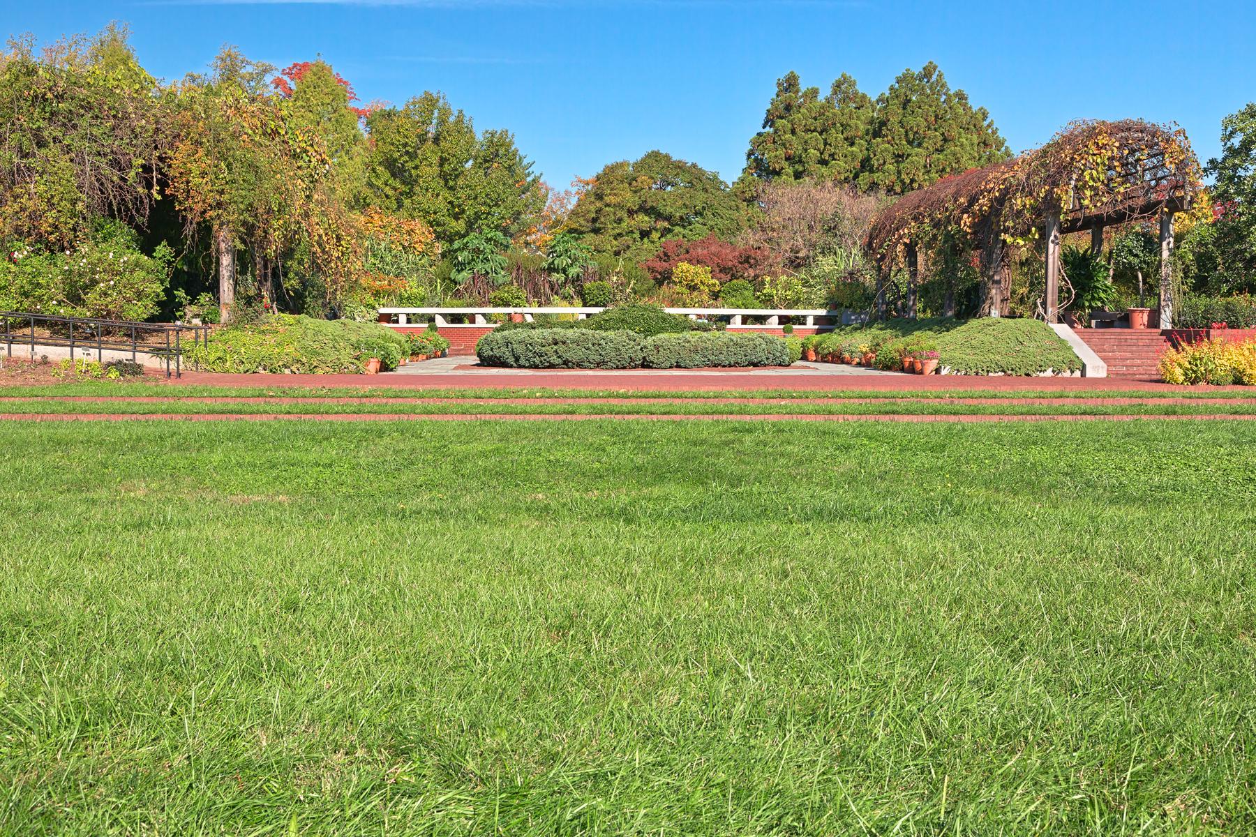 Arboretum herb garden - hdr photo