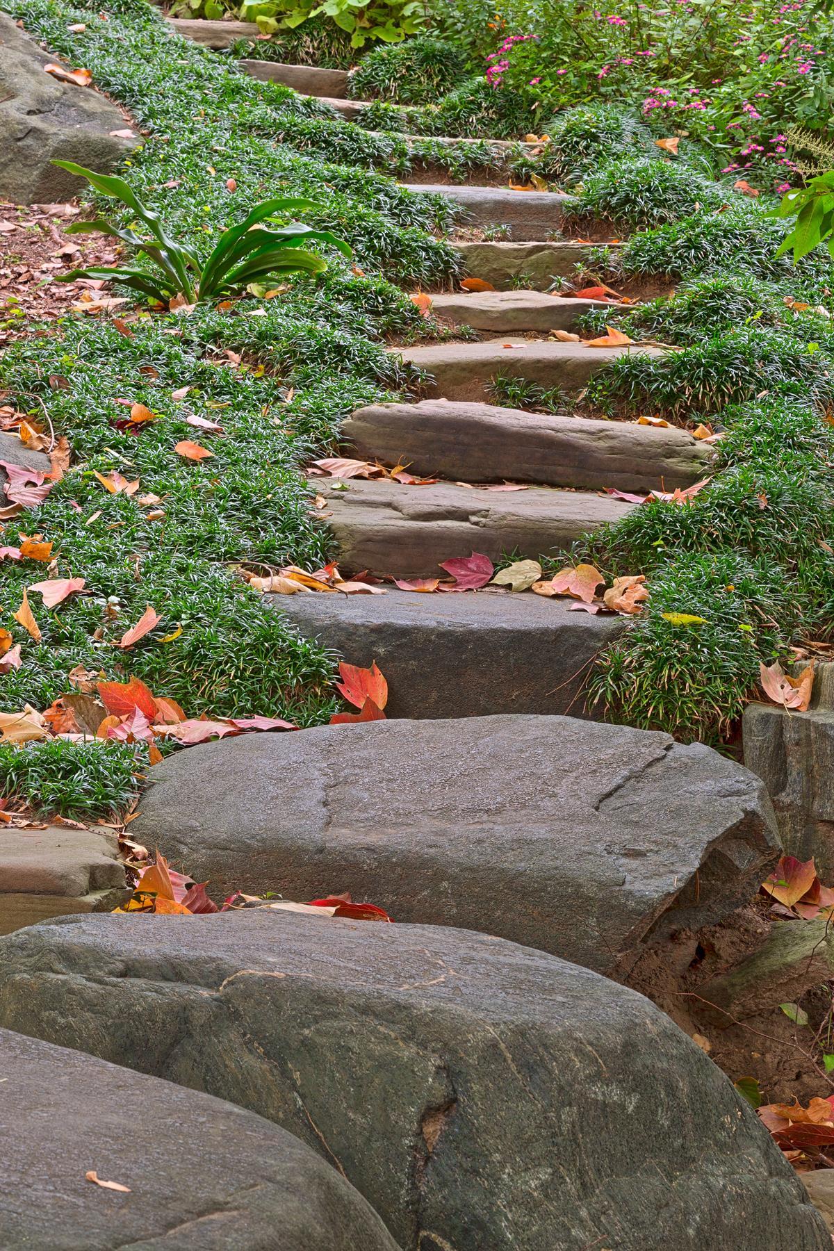 Arboretum stepping stones - hdr photo