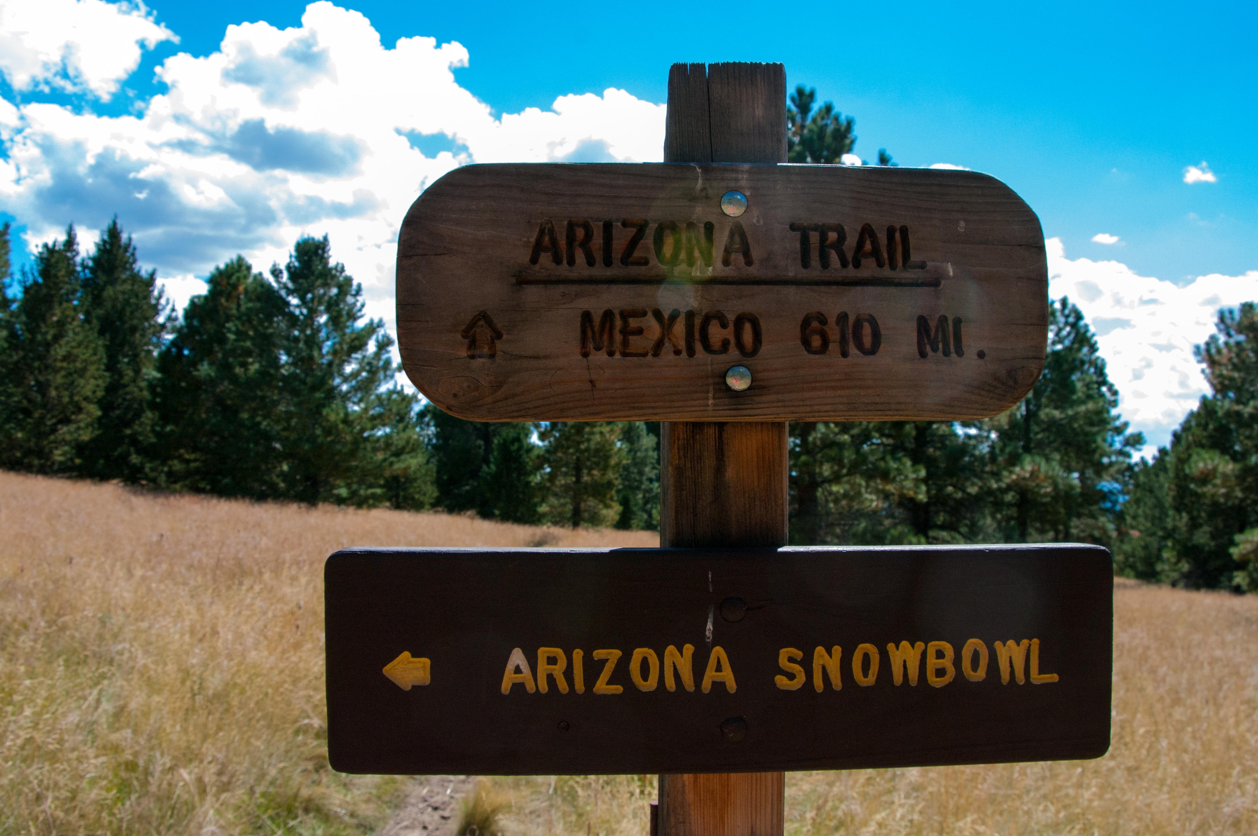 Arizona Trail-Aspen Loop Trail Junction, Arizona, National Forest, United states, Trail, HQ Photo
