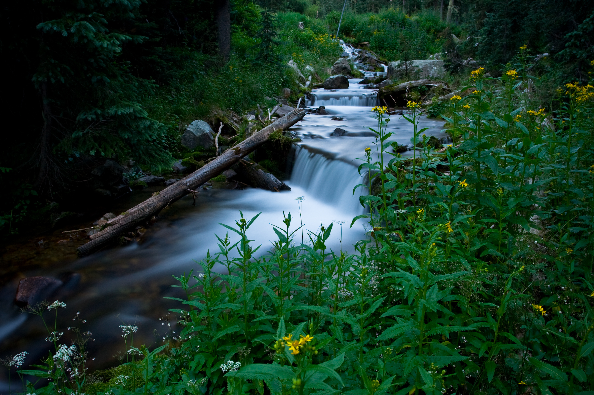 Art of Motion, Blue, Water, Vegetation, Valley, HQ Photo