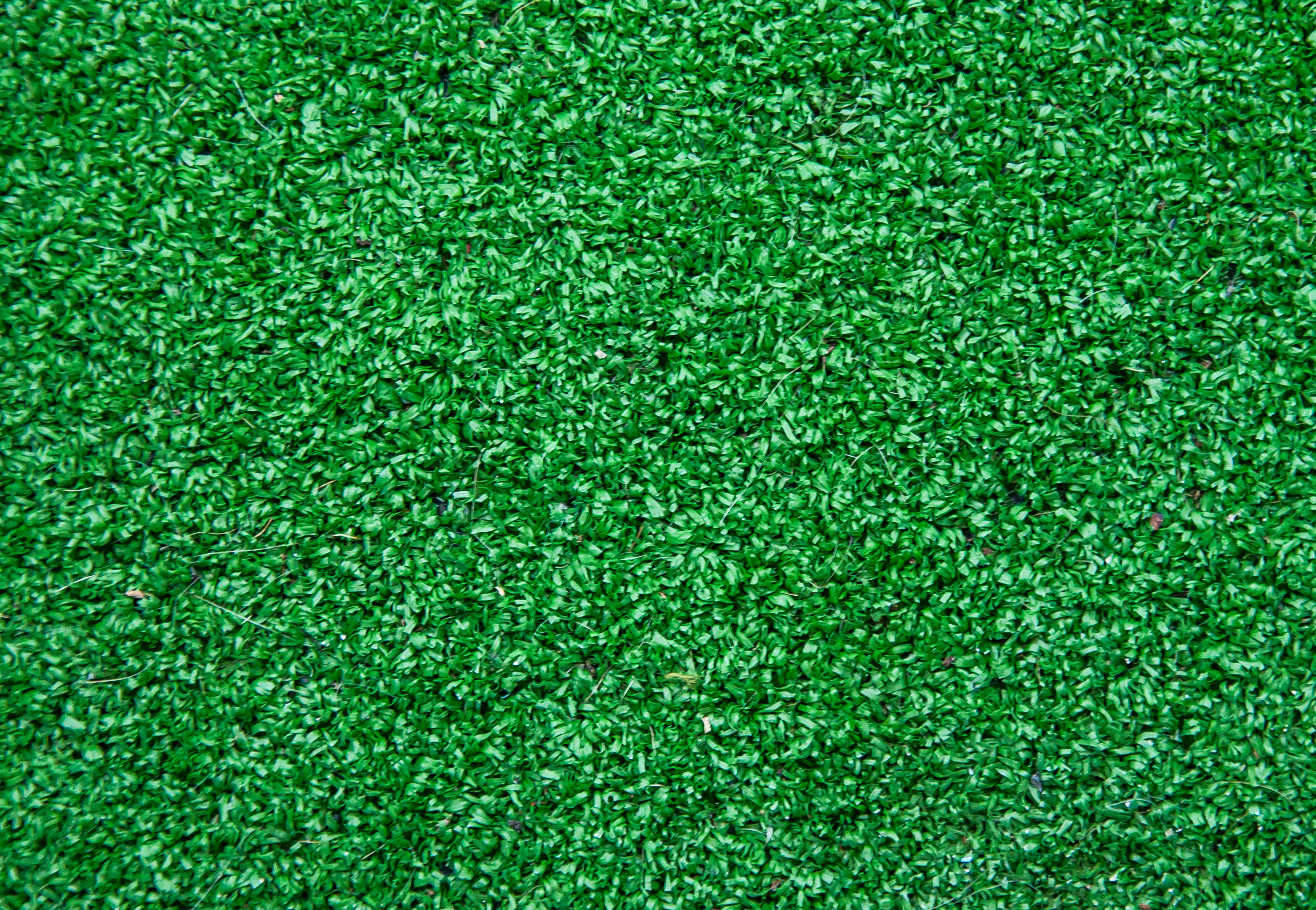 Free Photo Artificial Grass Background Lawn Indoor