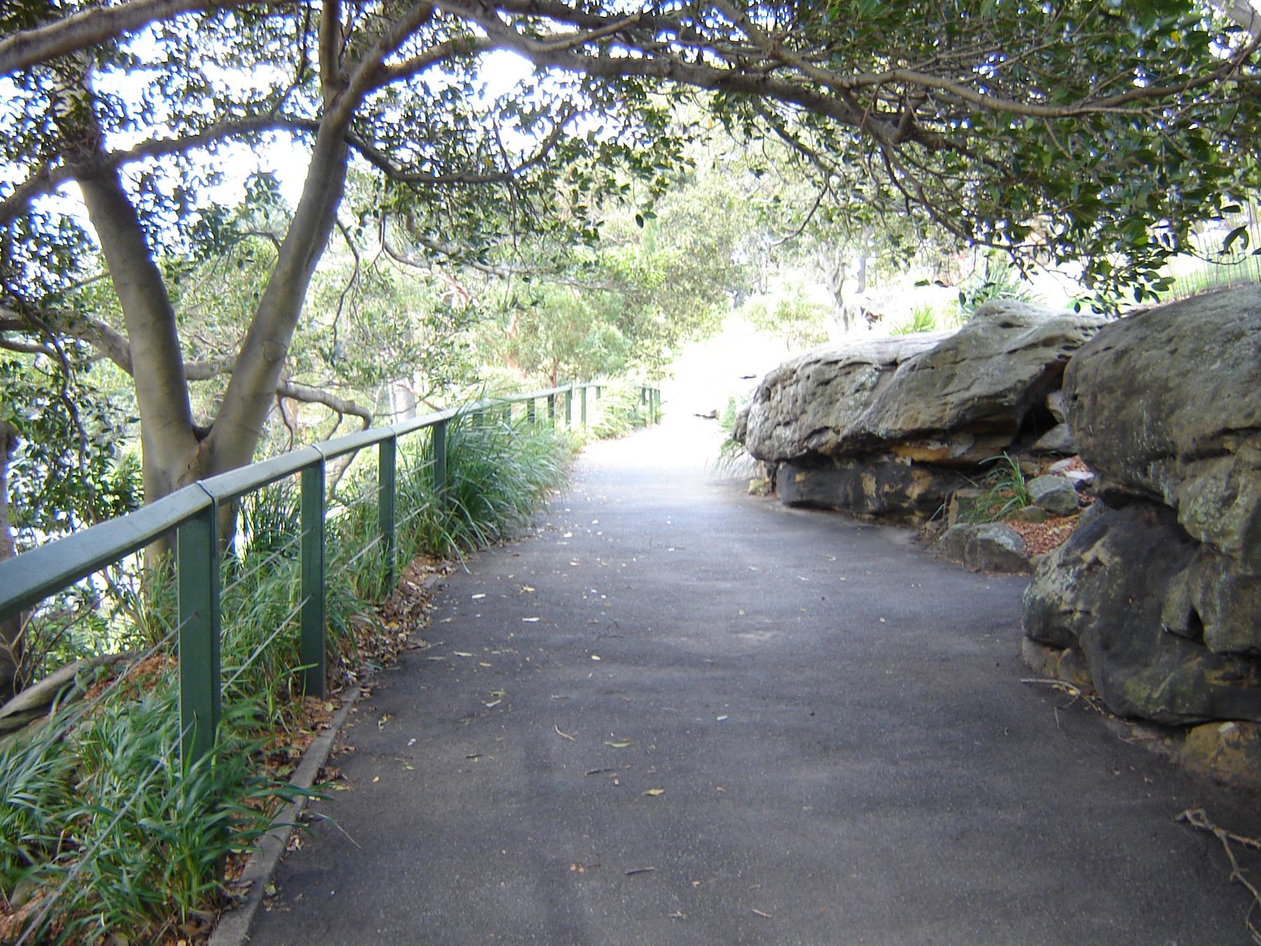 Asfalt walking path, Trees, Walking, Path, Cliffs, HQ Photo