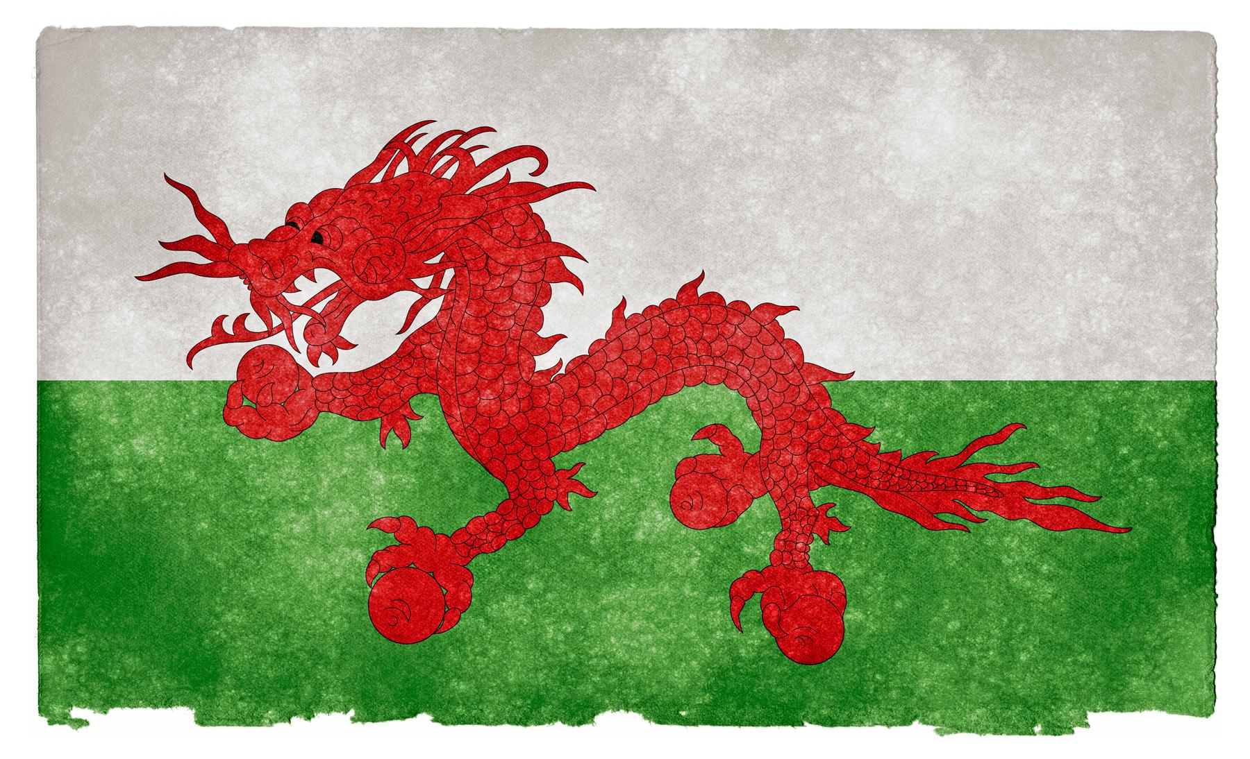 Asian Welsh Grunge Flag, Aged, Mythological, Parchment, Paper, HQ Photo