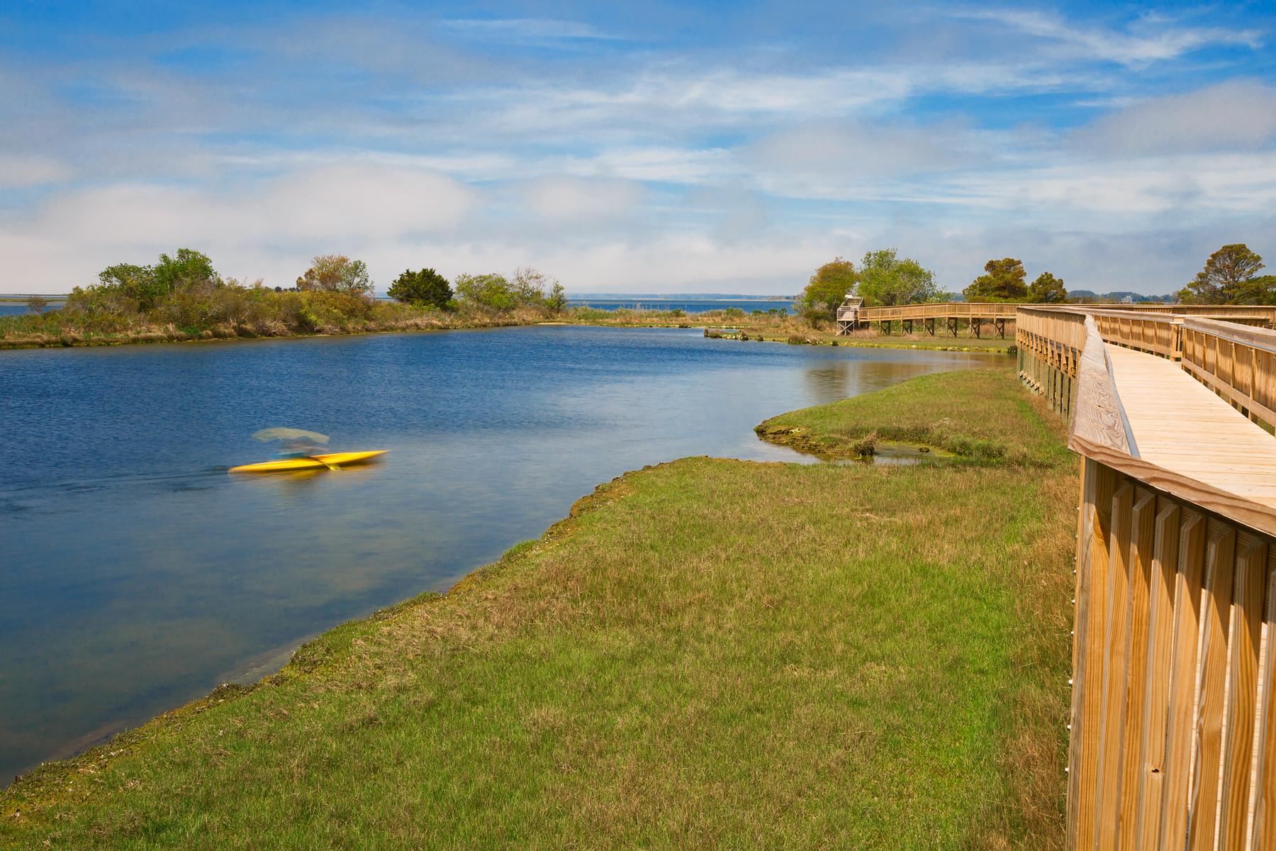 Assateague Island Marsh, America, Recreational, Shade, Serenity, HQ Photo