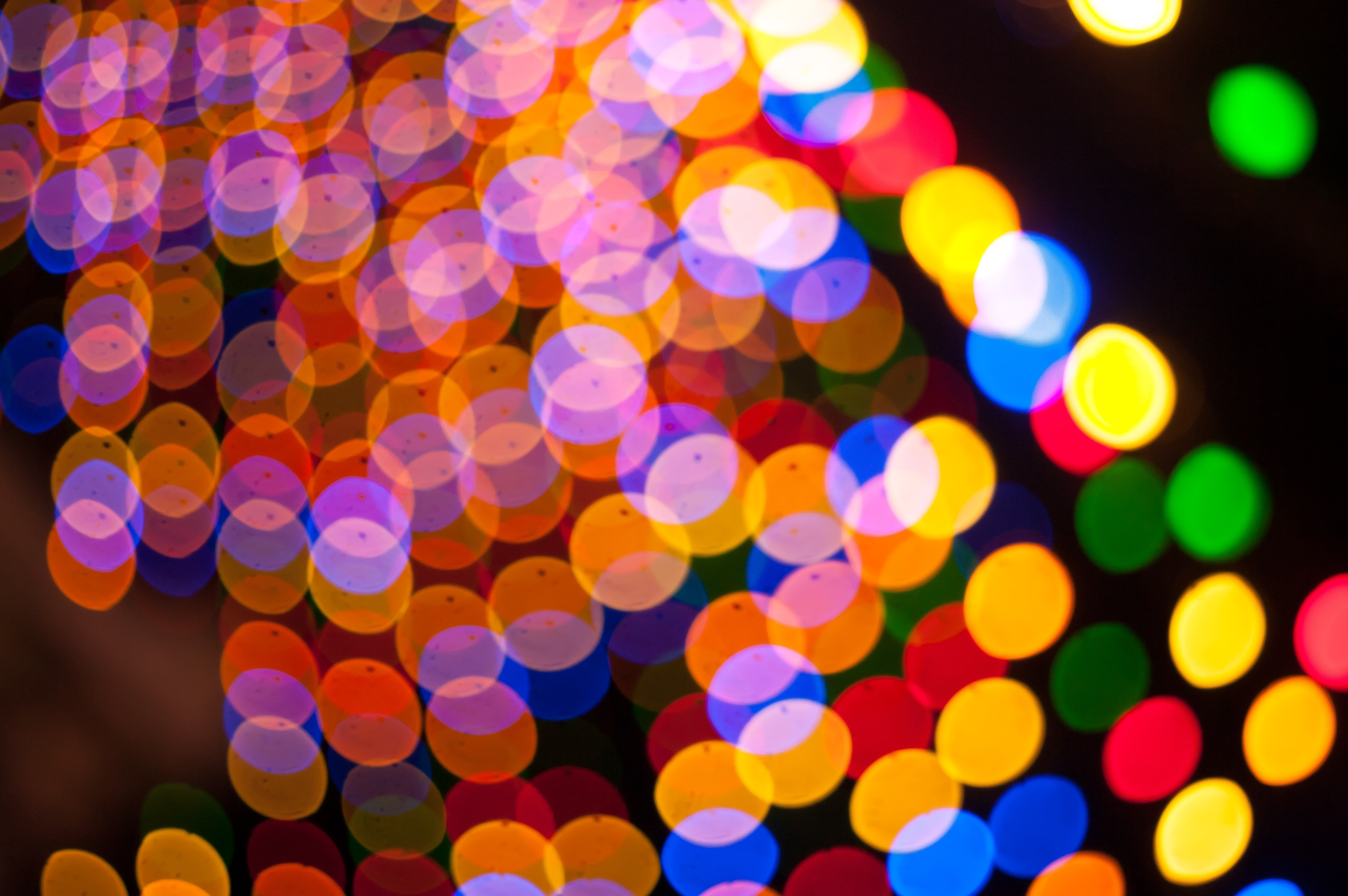 Assorted colors lights photo