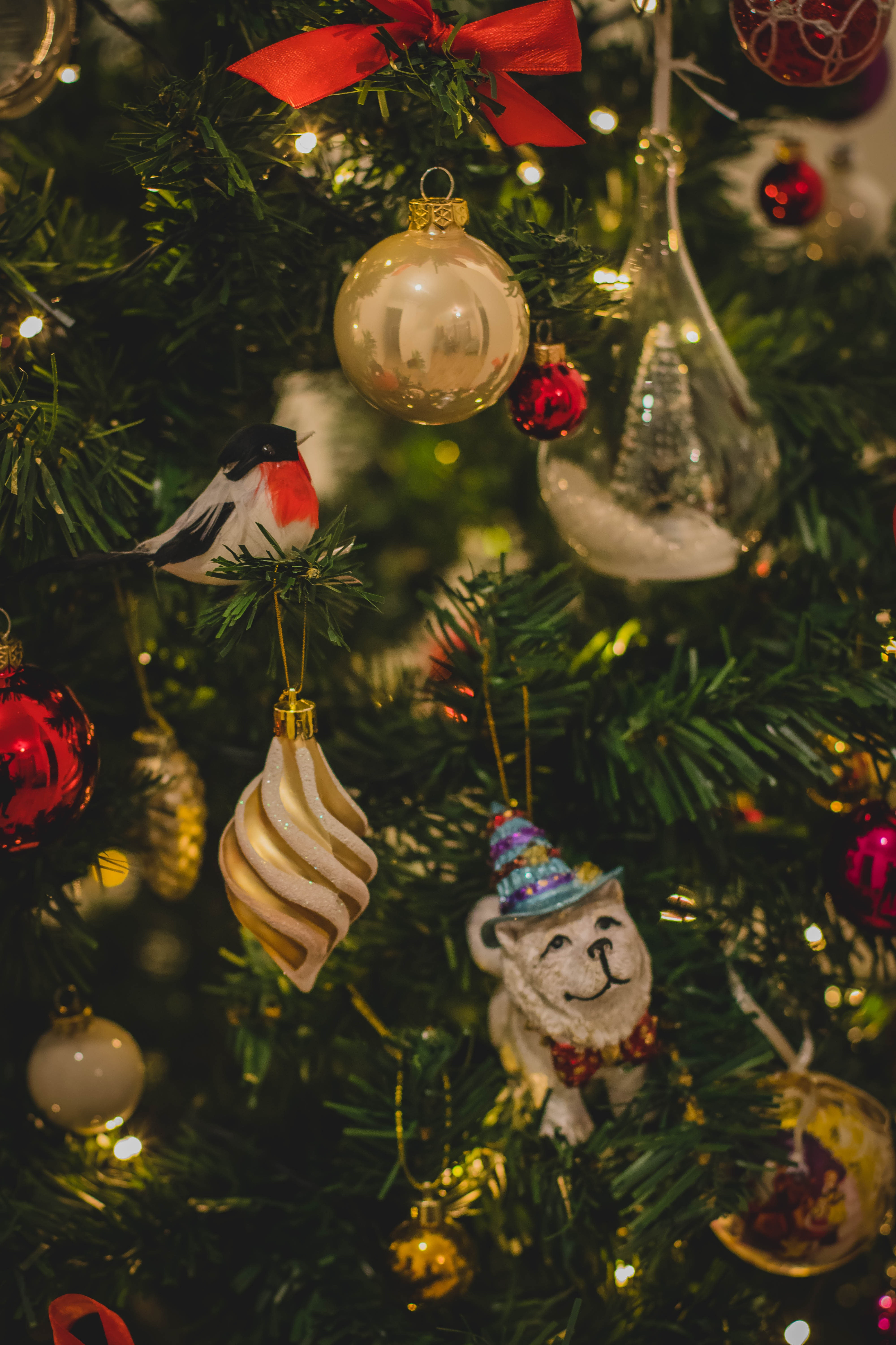 Assorted Ornaments on Christmas Tree, Golden, Tree, Threads, Sphere, HQ Photo