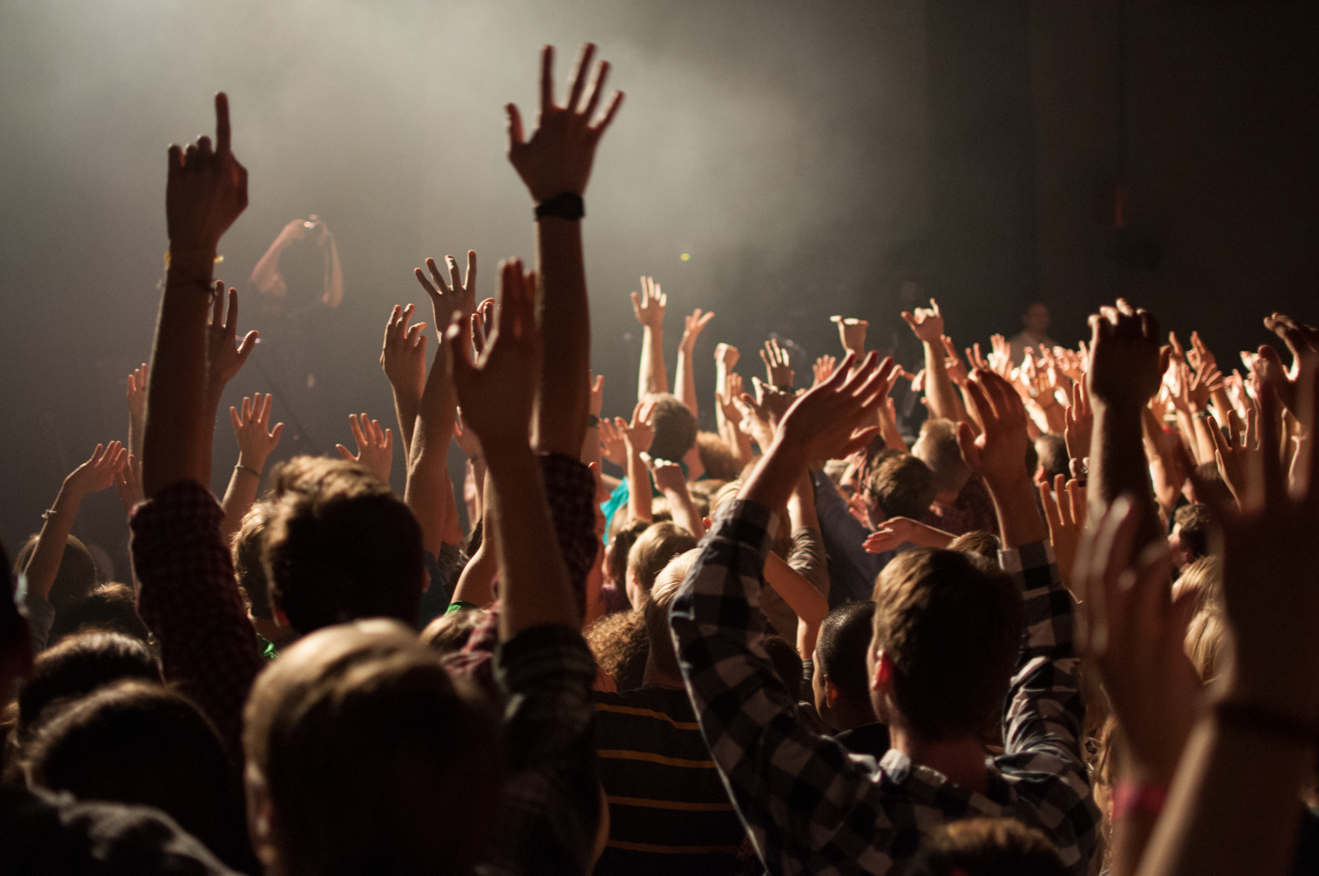 Nothing's strange about wearing earplugs to a concert? | Whim Online ...