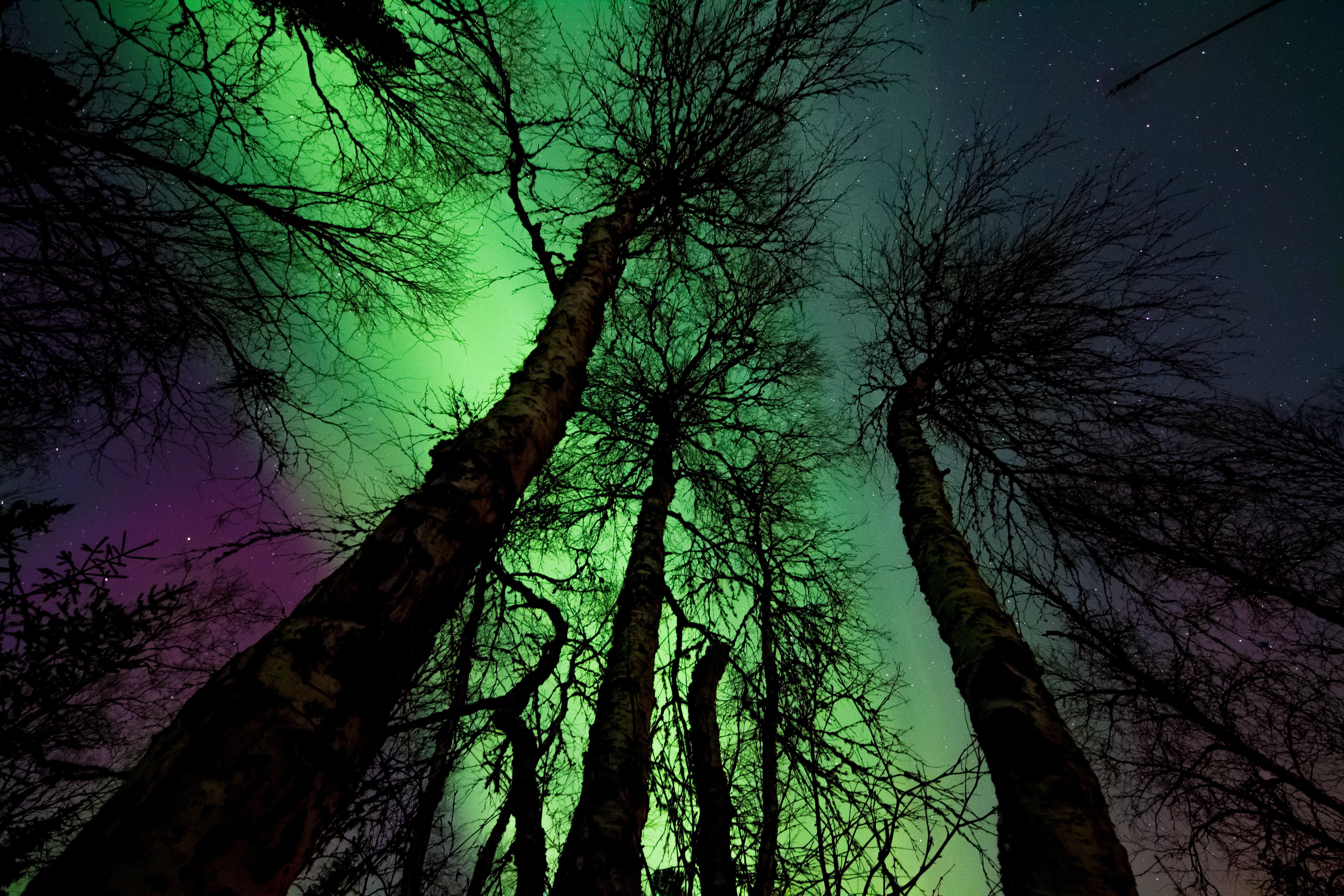 Aurora Borealis, Astronomy, Nightscape, Stars, Starry night, HQ Photo