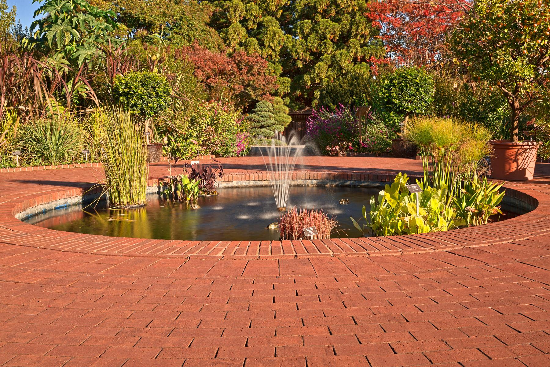 Autumn Arboretum Fountain - HDR, , Pretty, Purple, Quiet, HQ Photo