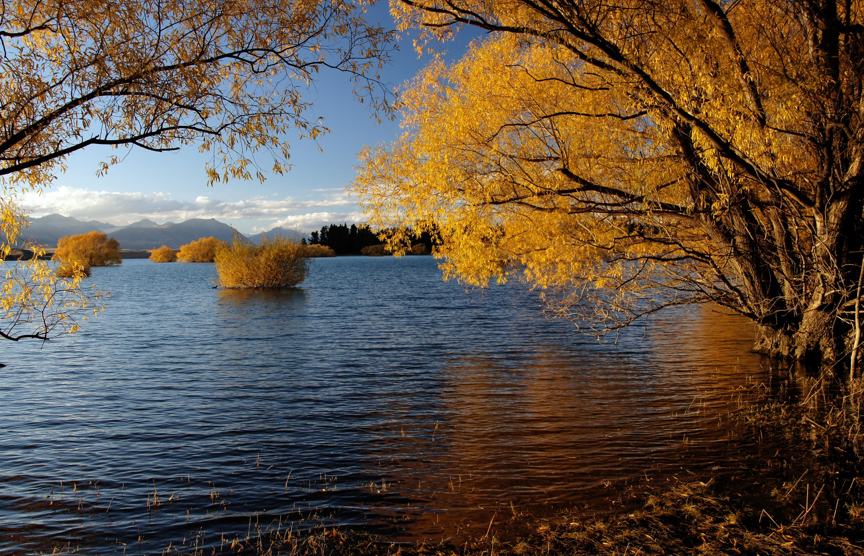 Autumn at lake tekapo nz (16) photo