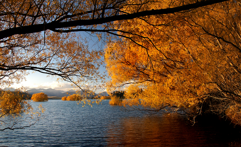 Autumn at Lake Tekapo NZ, River, Public Domain Dedication (CC0), Plant, Serene, HQ Photo