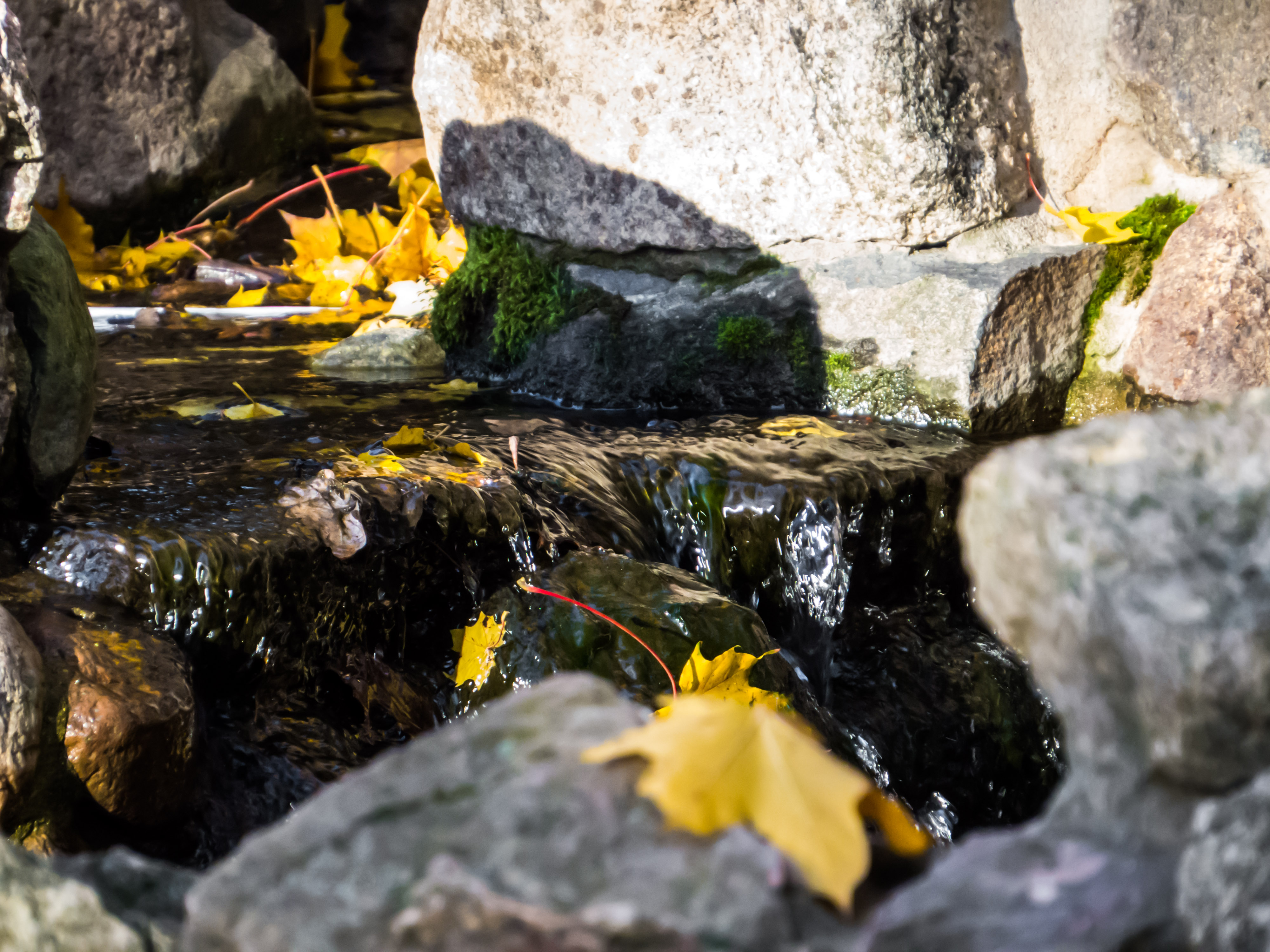Autumn beauty, Rock, Water, Vivid, Trees, HQ Photo