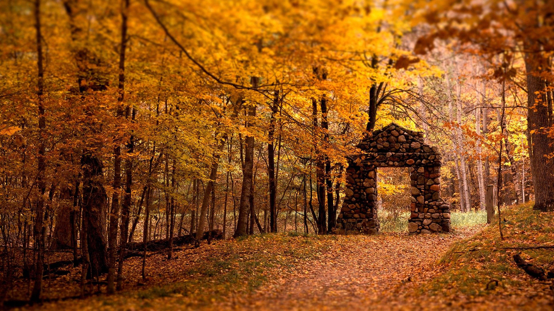 Forests: Stone Gate Autumn Beauty Forest Orange Photography Nature ...